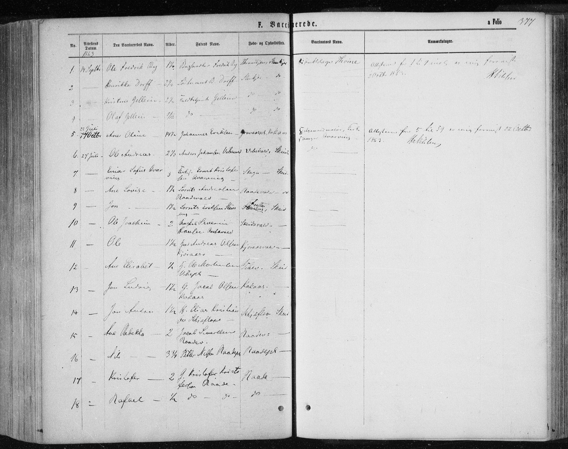 SAT, Ministerialprotokoller, klokkerbøker og fødselsregistre - Nord-Trøndelag, 735/L0345: Ministerialbok nr. 735A08 /1, 1863-1872, s. 377