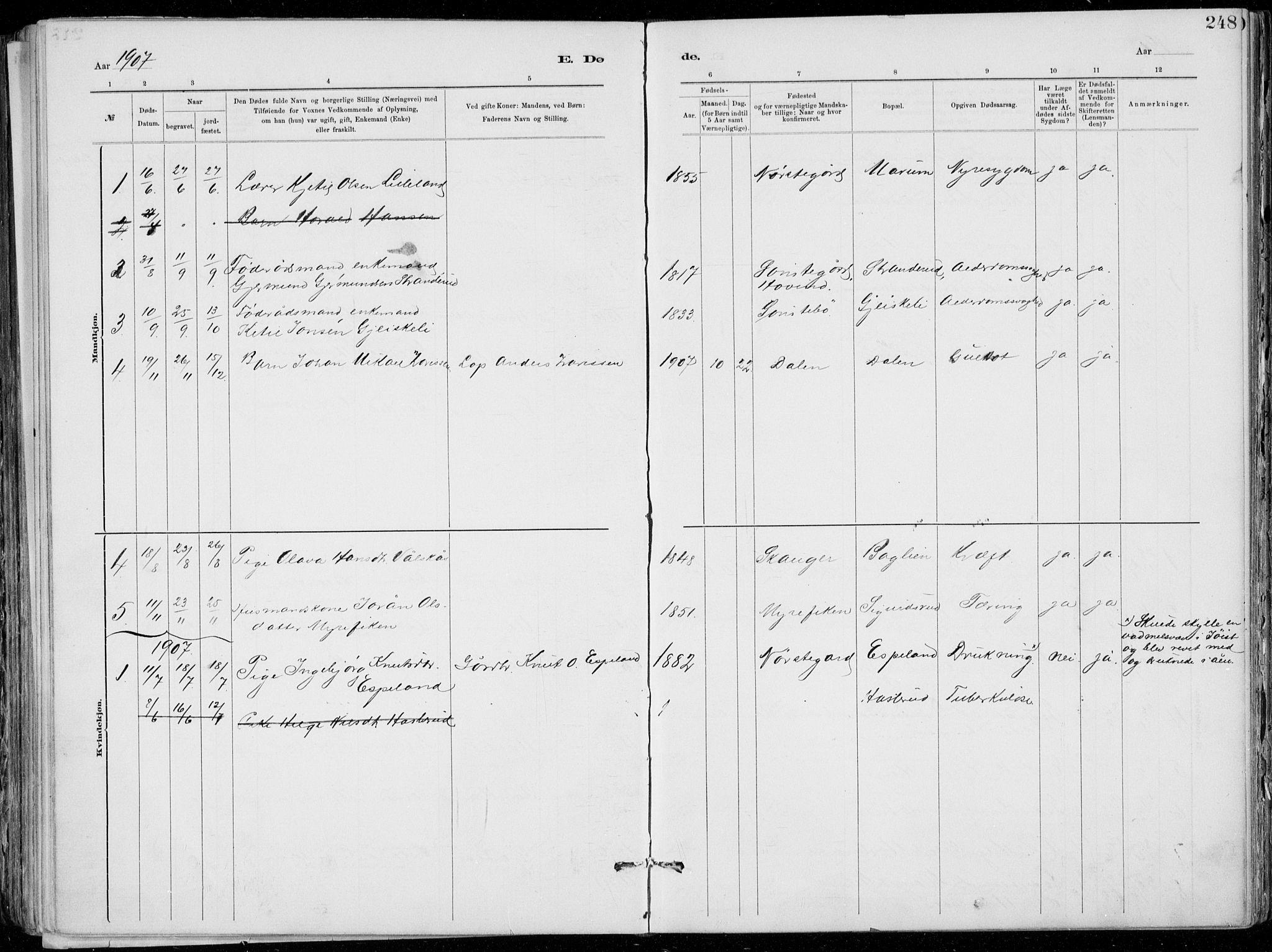 SAKO, Tinn kirkebøker, F/Fa/L0007: Ministerialbok nr. I 7, 1878-1922, s. 248