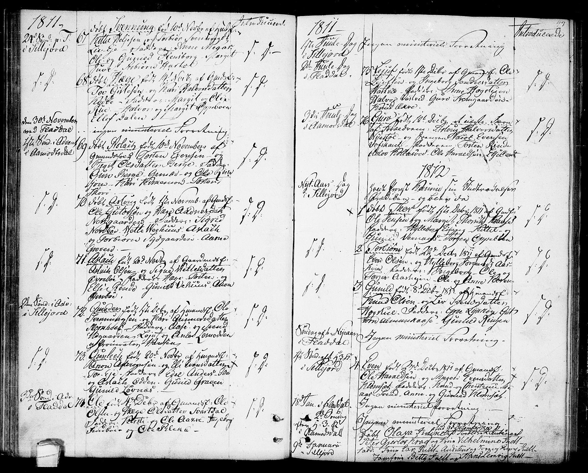 SAKO, Seljord kirkebøker, F/Fa/L0009: Ministerialbok nr. I 9, 1801-1814, s. 43