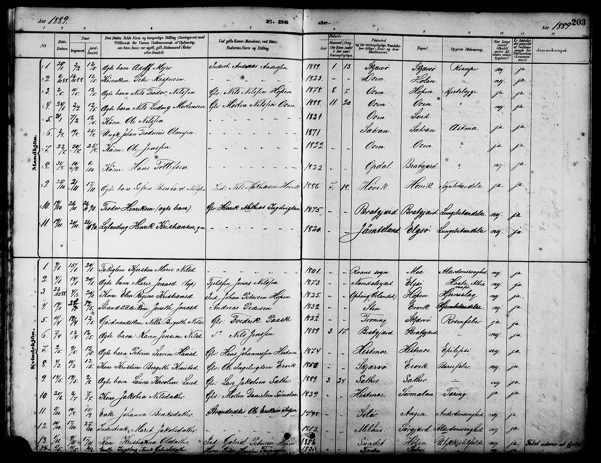 SAT, Ministerialprotokoller, klokkerbøker og fødselsregistre - Sør-Trøndelag, 658/L0726: Klokkerbok nr. 658C02, 1883-1908, s. 203