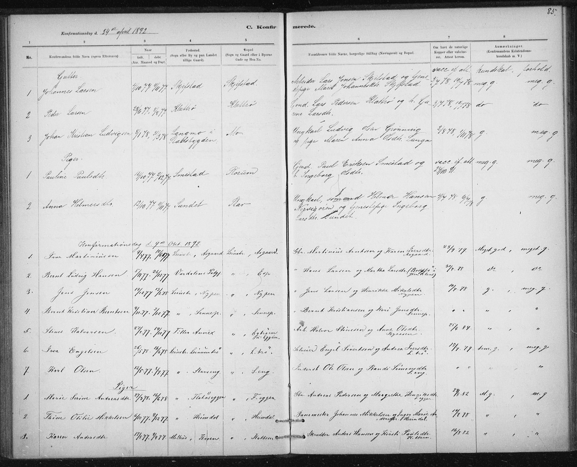 SAT, Ministerialprotokoller, klokkerbøker og fødselsregistre - Sør-Trøndelag, 613/L0392: Ministerialbok nr. 613A01, 1887-1906, s. 85