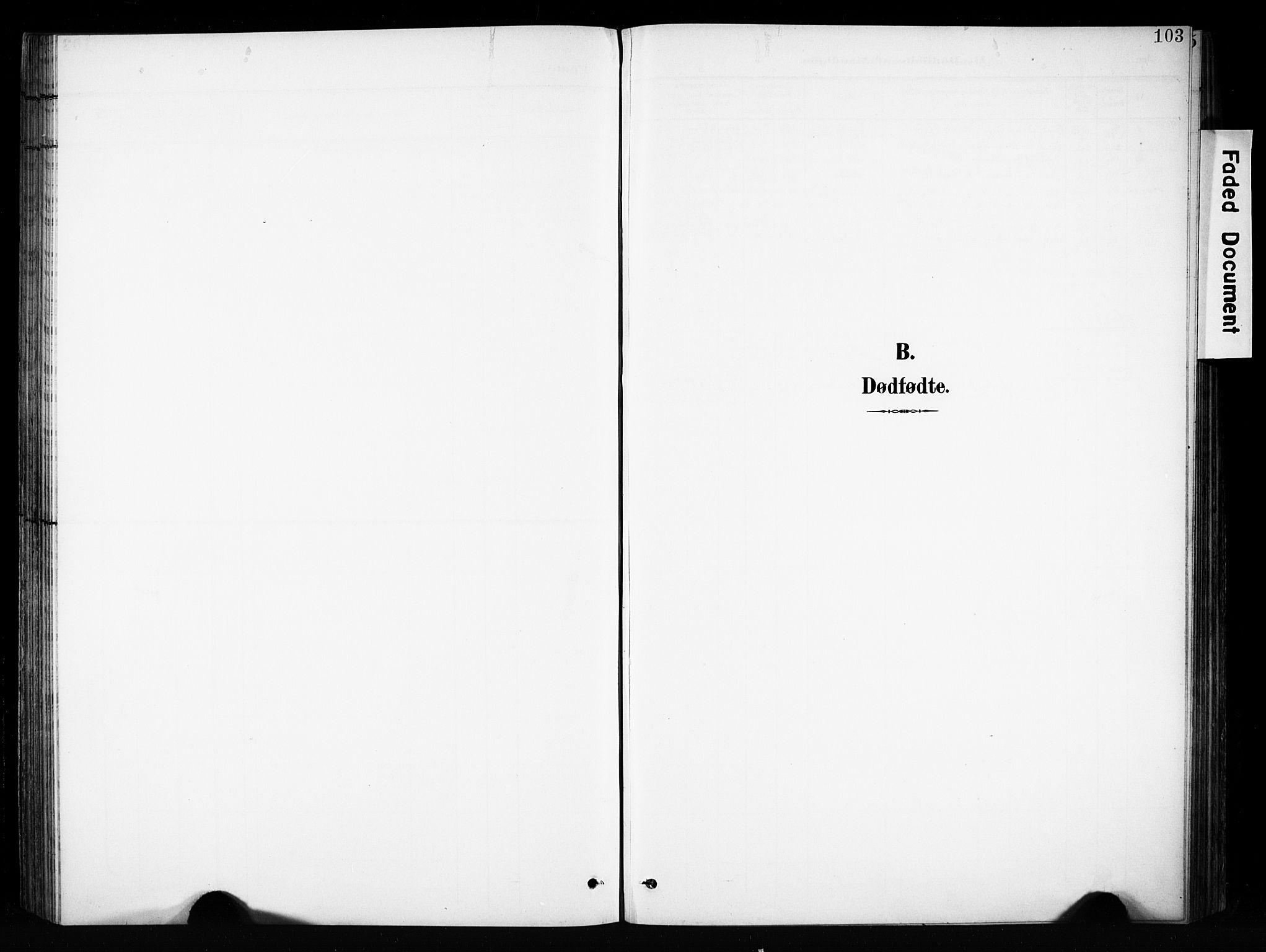 SAH, Brandbu prestekontor, Ministerialbok nr. 1, 1900-1912, s. 103