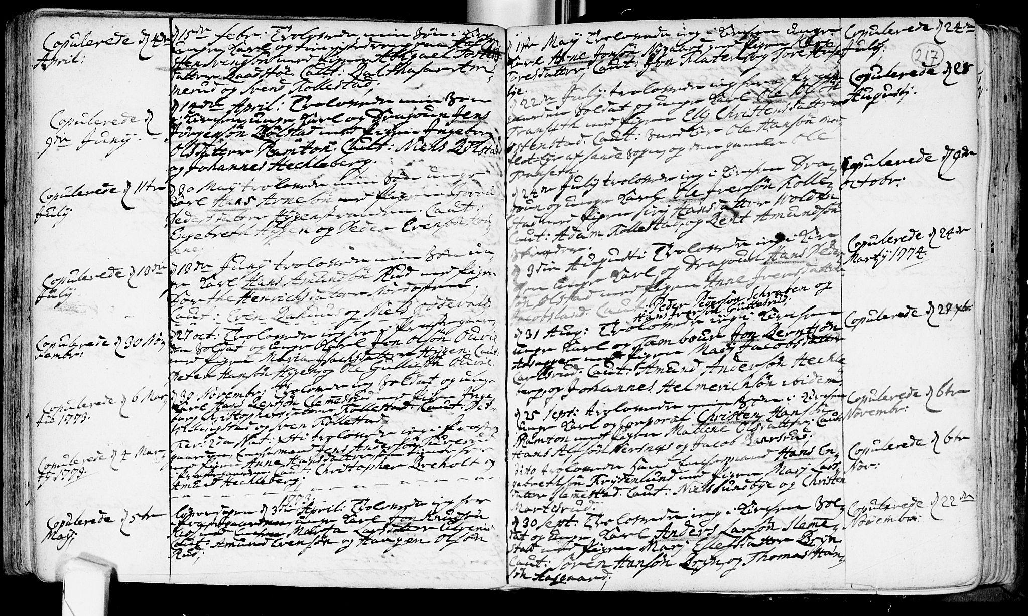 SAKO, Røyken kirkebøker, F/Fa/L0002: Ministerialbok nr. 2, 1731-1782, s. 217