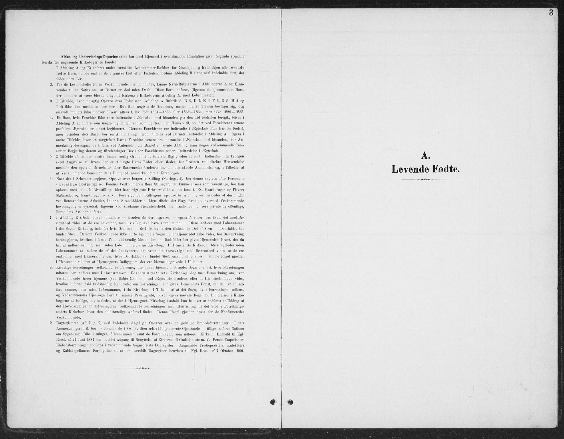 SAH, Østre Gausdal prestekontor, Ministerialbok nr. 5, 1902-1920, s. 3
