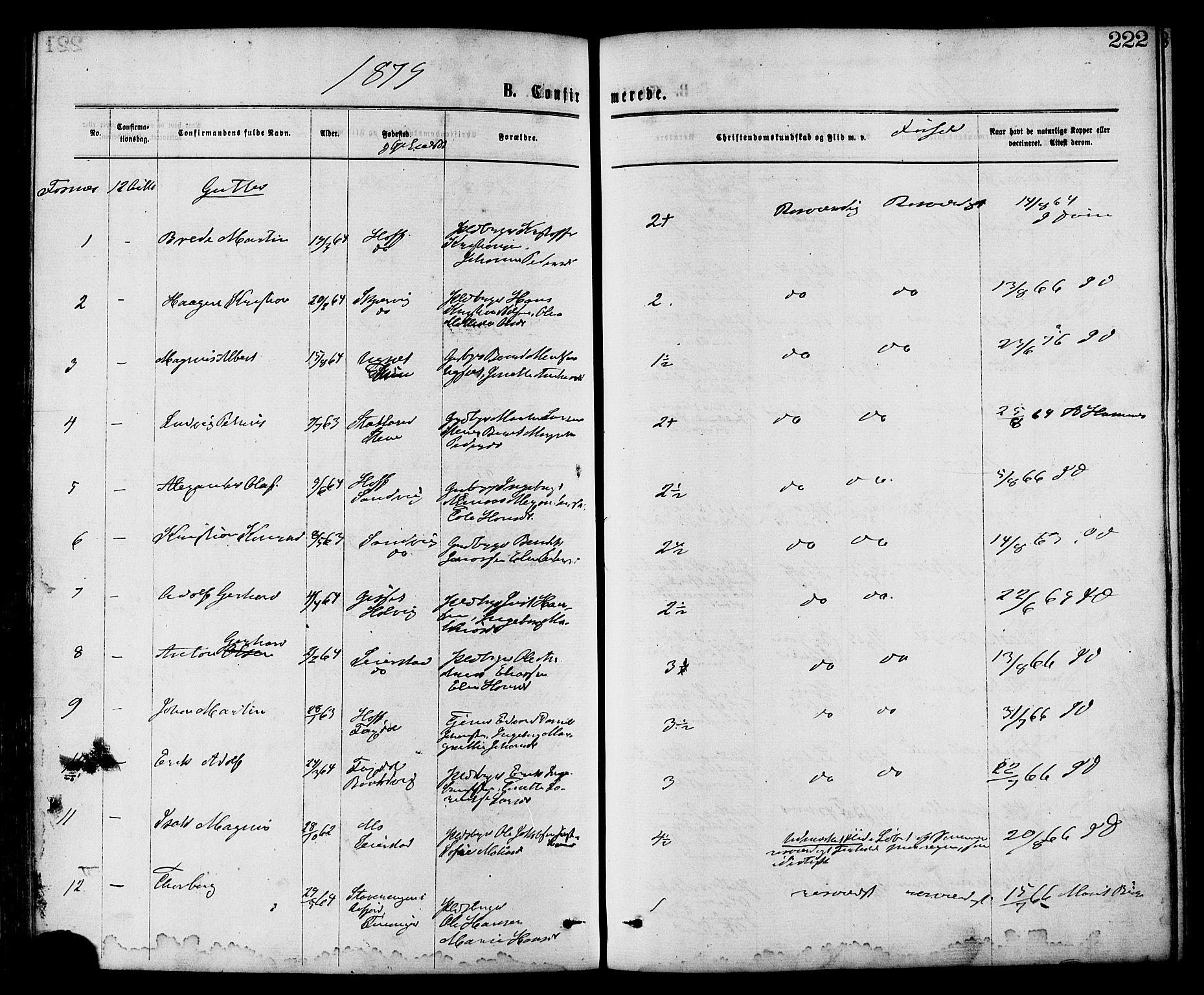 SAT, Ministerialprotokoller, klokkerbøker og fødselsregistre - Nord-Trøndelag, 773/L0616: Ministerialbok nr. 773A07, 1870-1887, s. 222