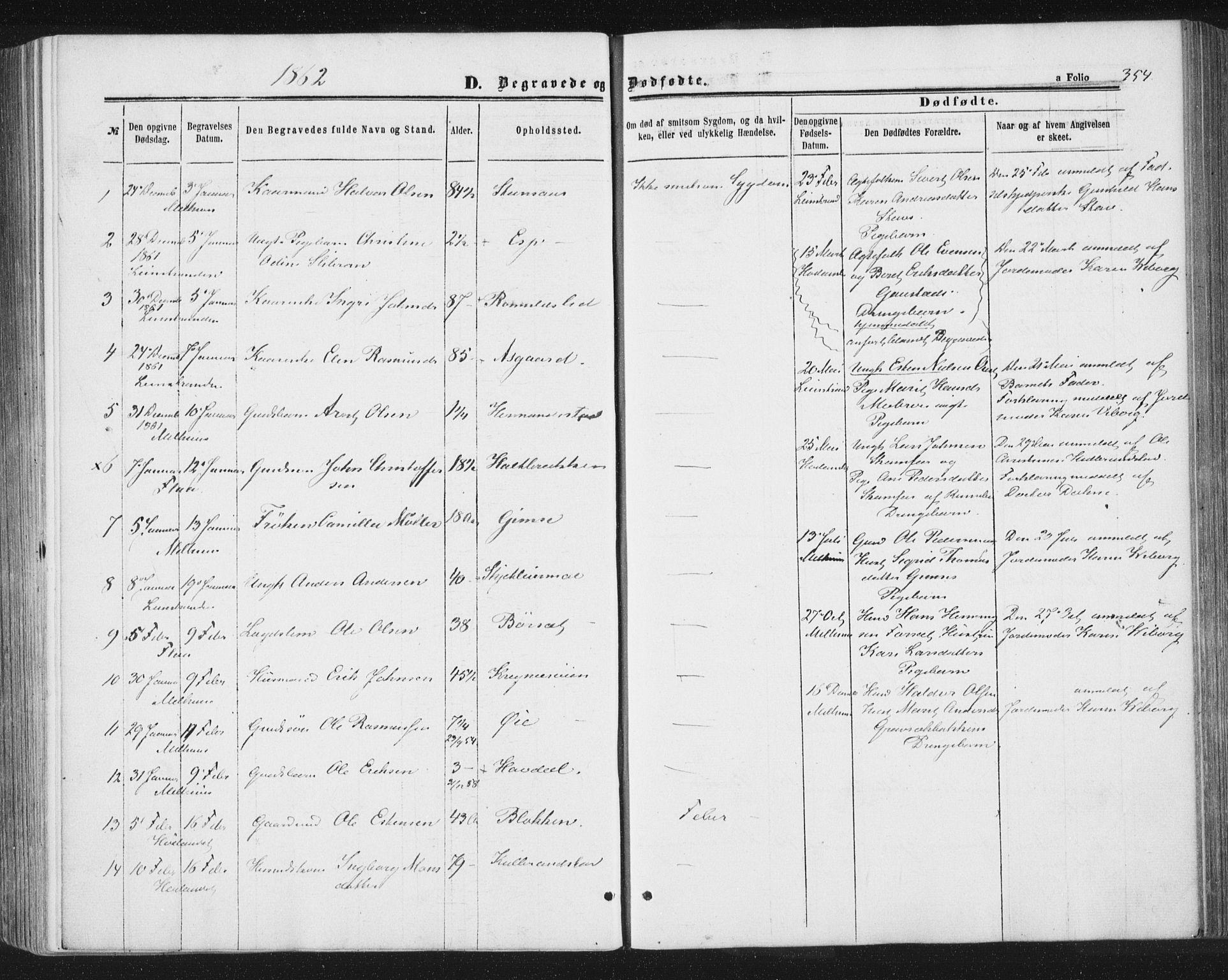 SAT, Ministerialprotokoller, klokkerbøker og fødselsregistre - Sør-Trøndelag, 691/L1077: Ministerialbok nr. 691A09, 1862-1873, s. 354
