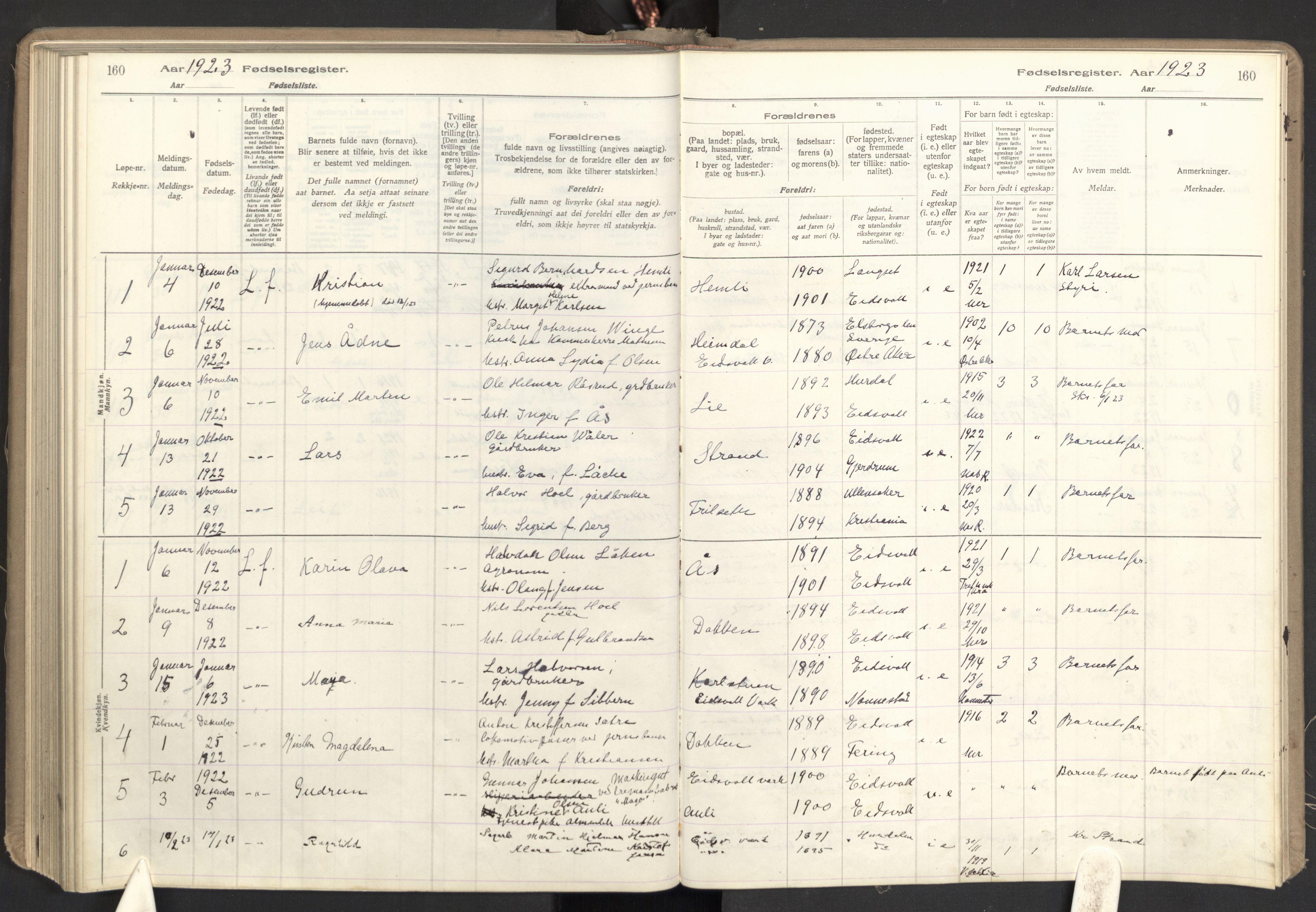 SAO, Eidsvoll prestekontor Kirkebøker, Fødselsregister nr. I 1, 1916-1924, s. 160