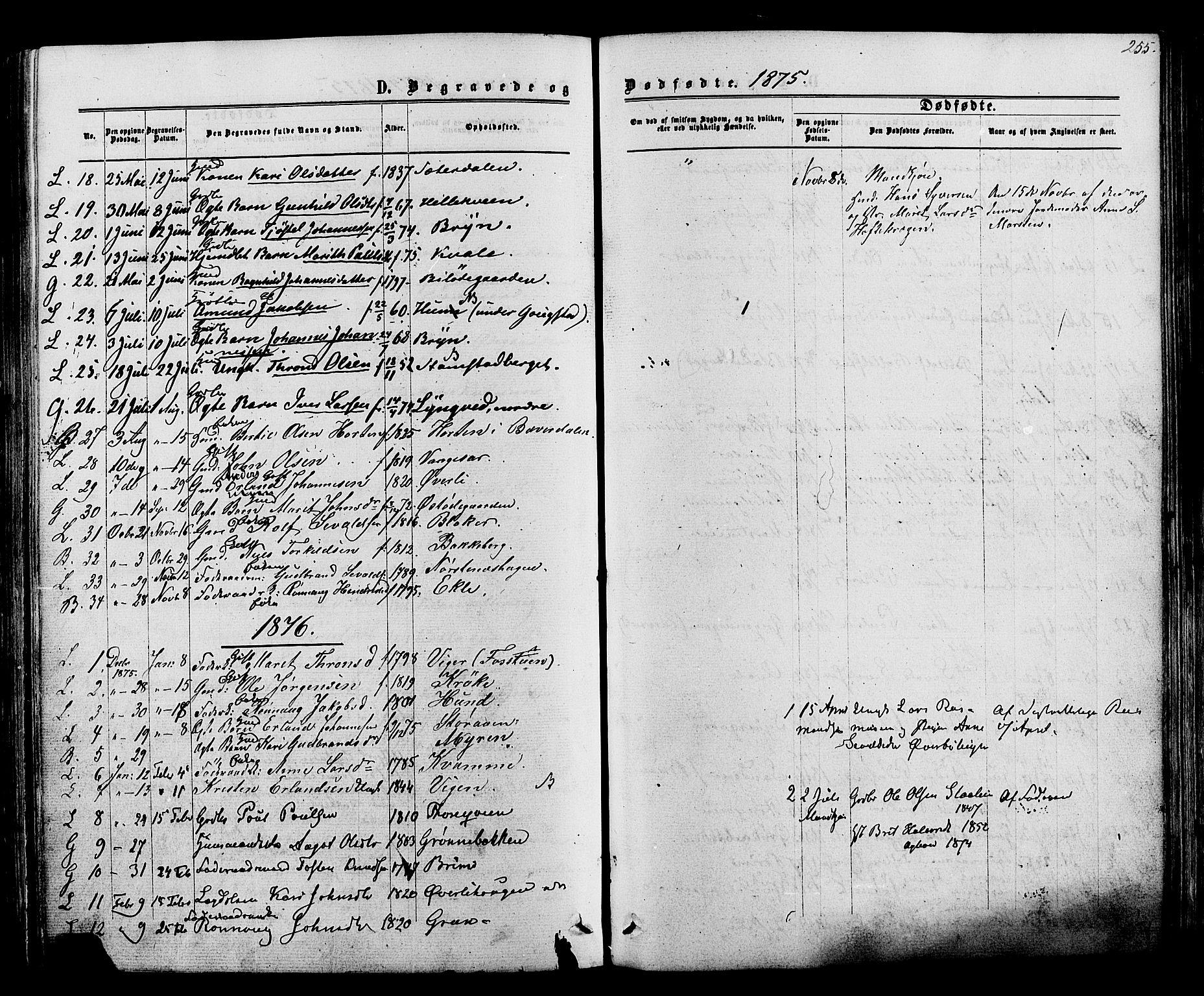 SAH, Lom prestekontor, K/L0007: Ministerialbok nr. 7, 1863-1884, s. 255