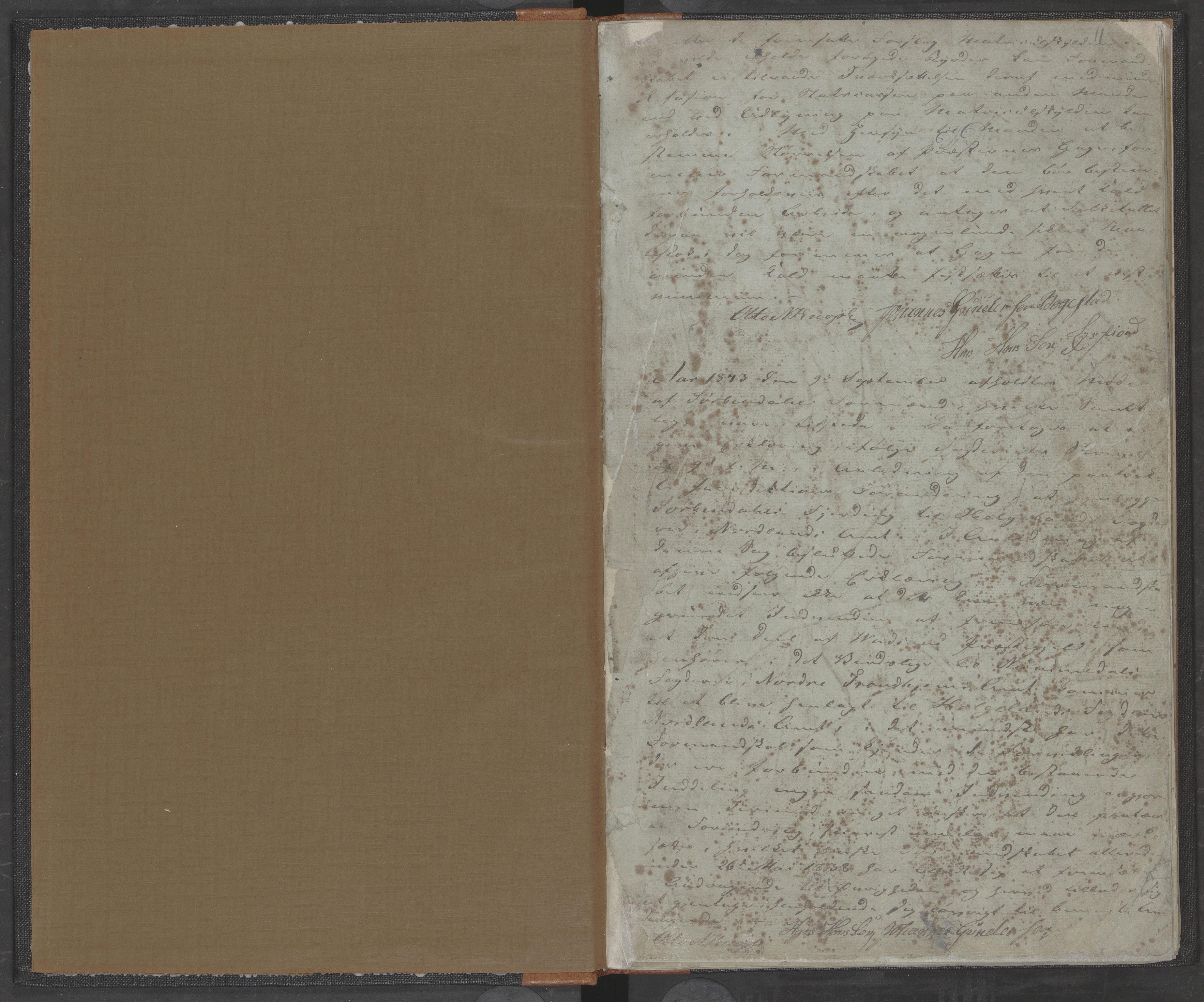 AIN, Bindal kommune. Formannskapet, A/Aa/L0000a: Møtebok, 1843-1881, s. 11