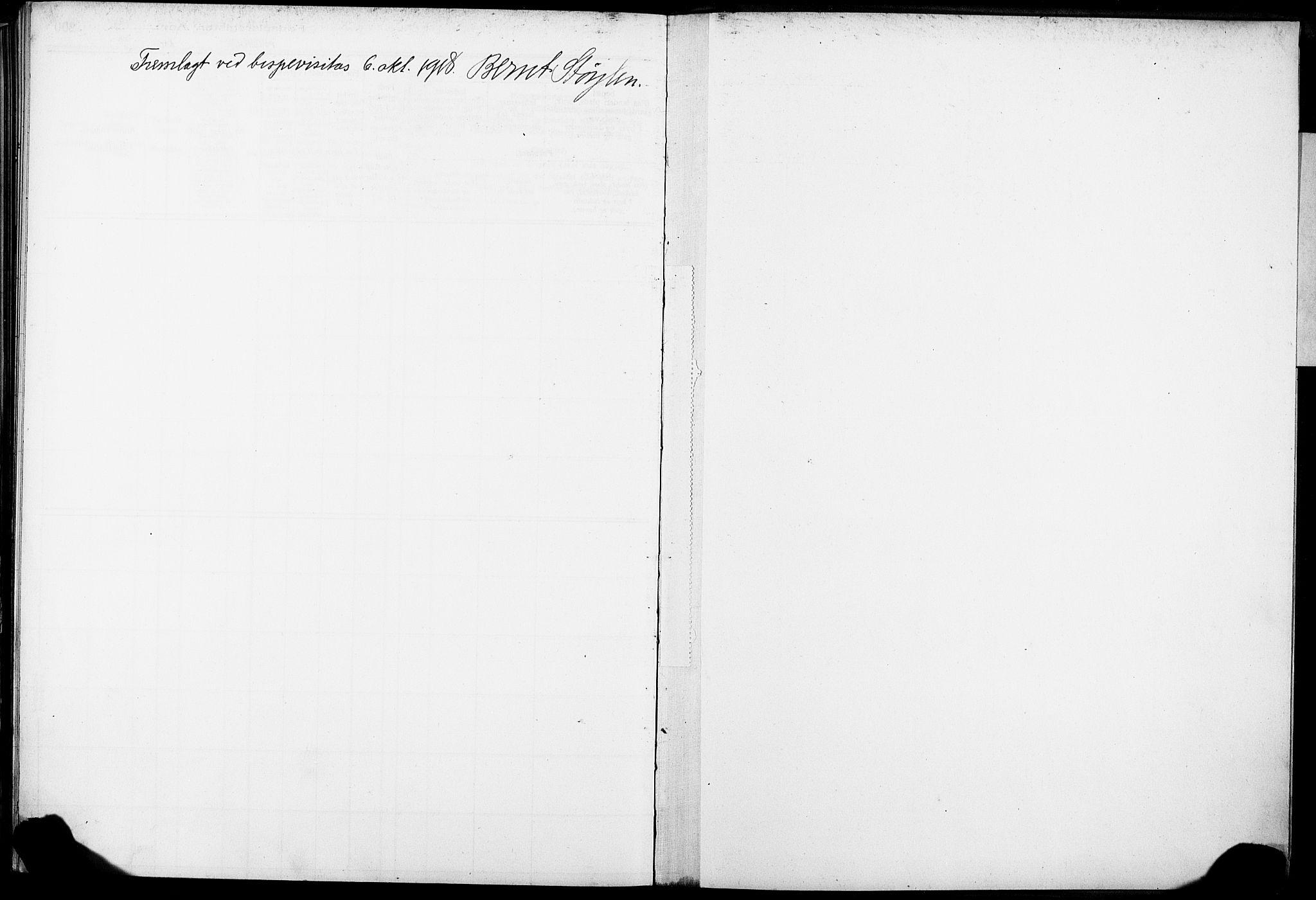SAKO, Skien kirkebøker, J/Ja/L0001: Fødselsregister nr. 1, 1916-1920