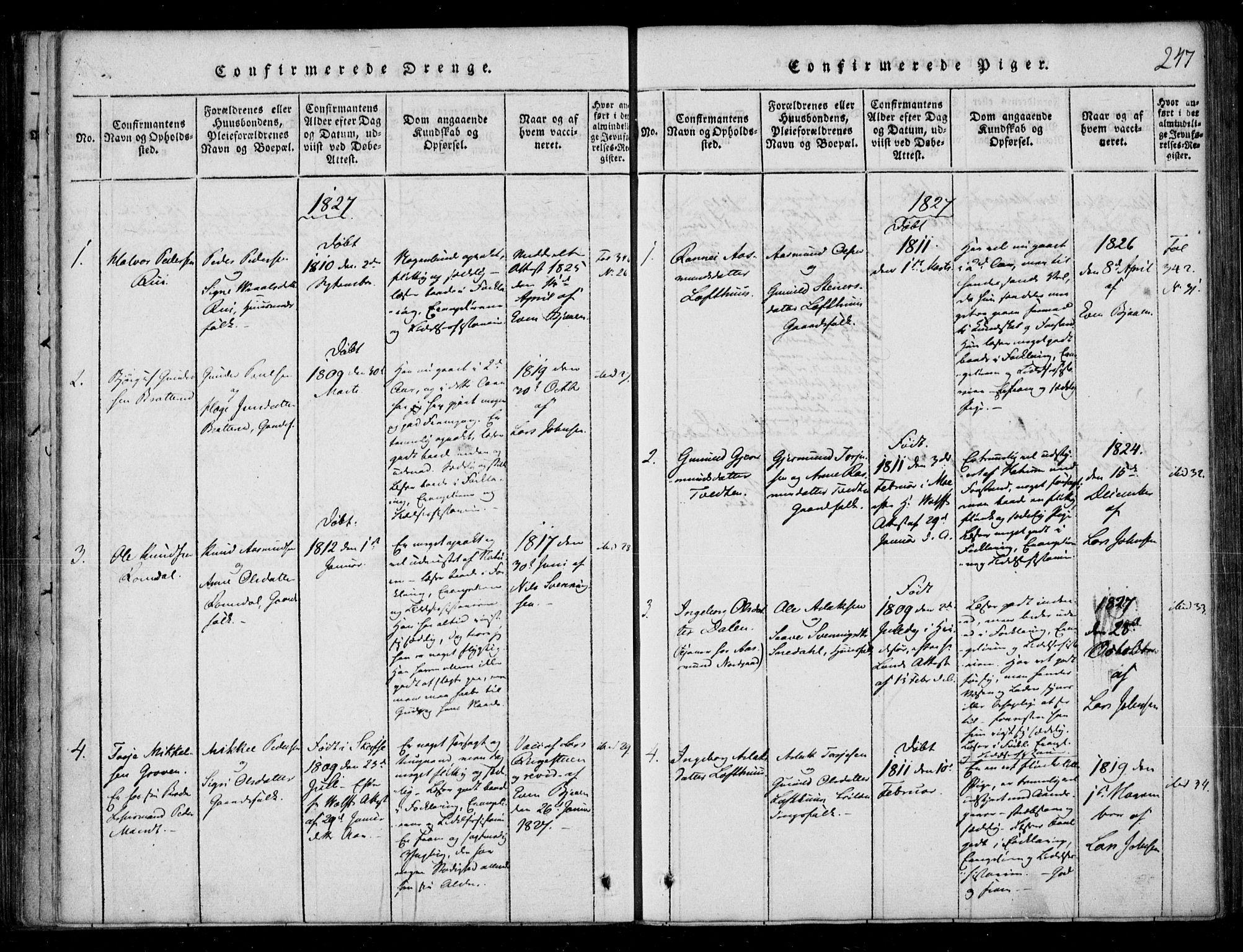 SAKO, Lårdal kirkebøker, F/Fb/L0001: Ministerialbok nr. II 1, 1815-1860, s. 247