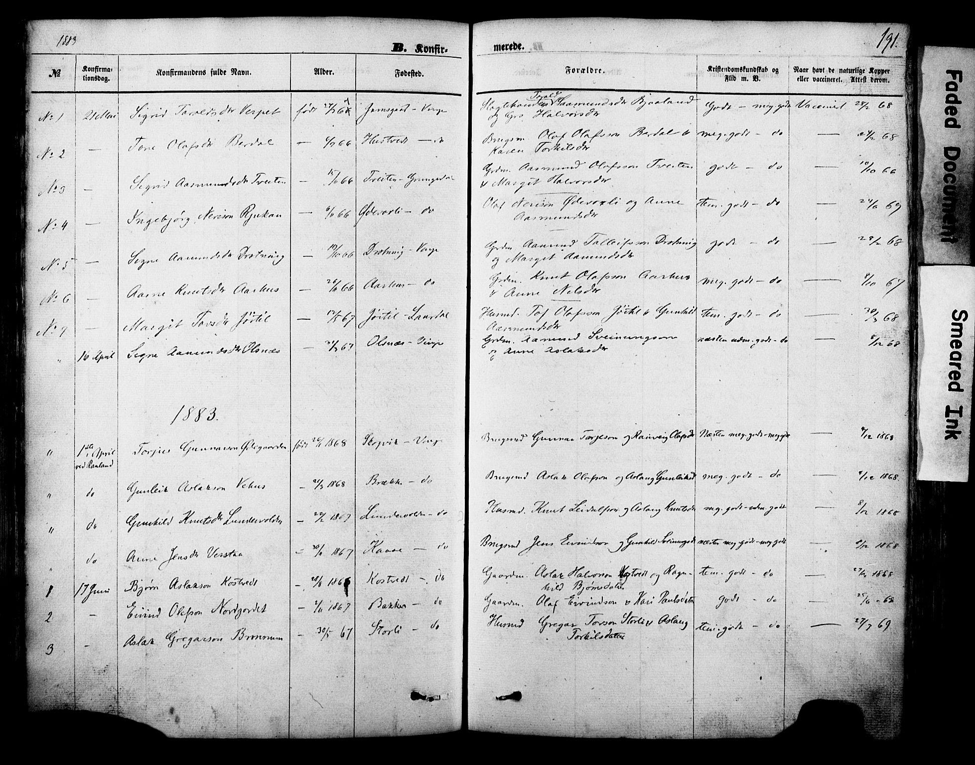 SAKO, Vinje kirkebøker, F/Fa/L0005: Ministerialbok nr. I 5, 1870-1886, s. 191