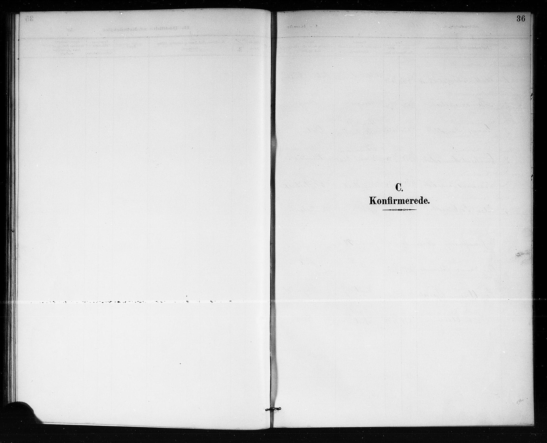 SAKO, Lårdal kirkebøker, G/Gb/L0003: Klokkerbok nr. II 3, 1889-1920, s. 36