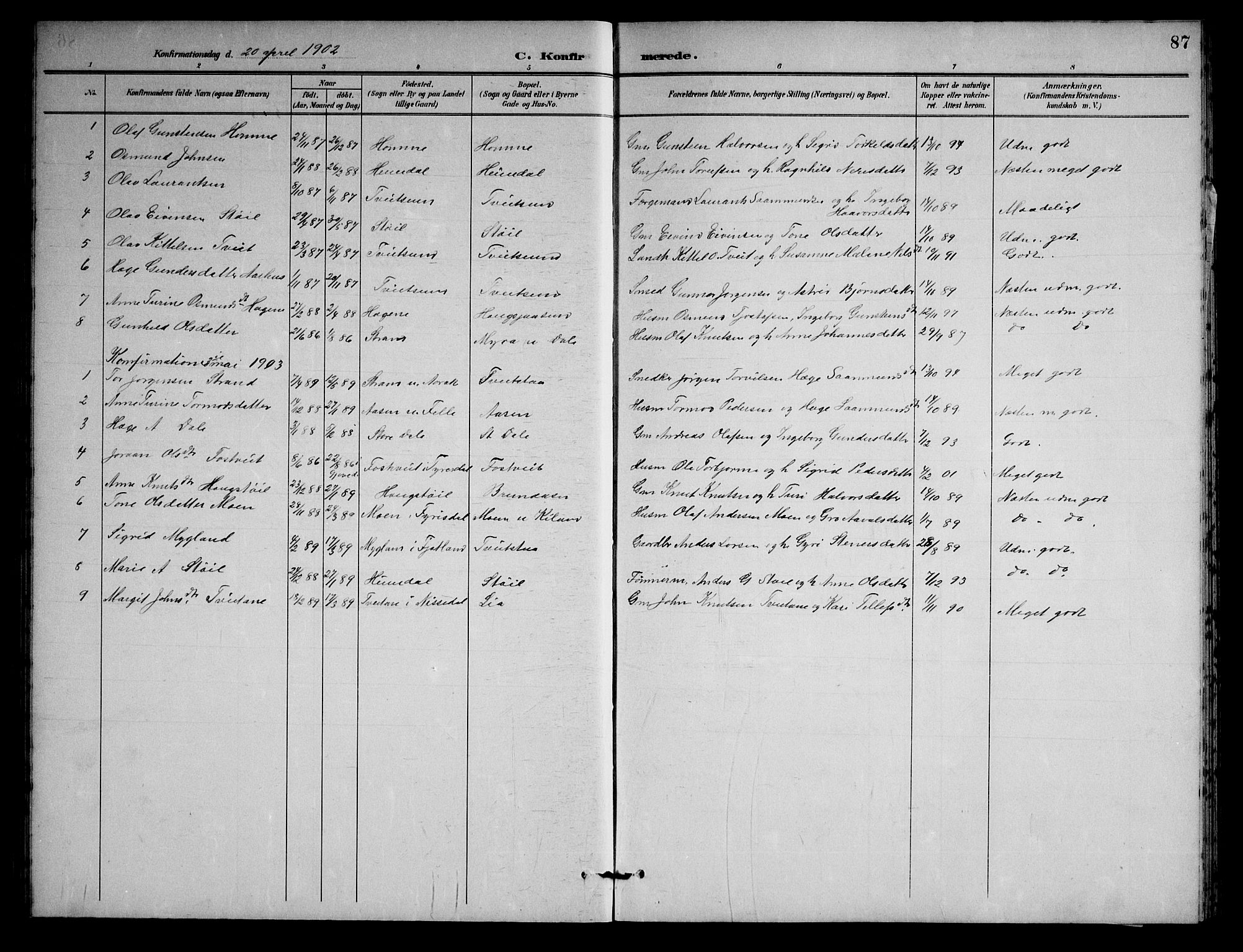 SAKO, Nissedal kirkebøker, G/Gb/L0003: Klokkerbok nr. II 3, 1893-1928, s. 87