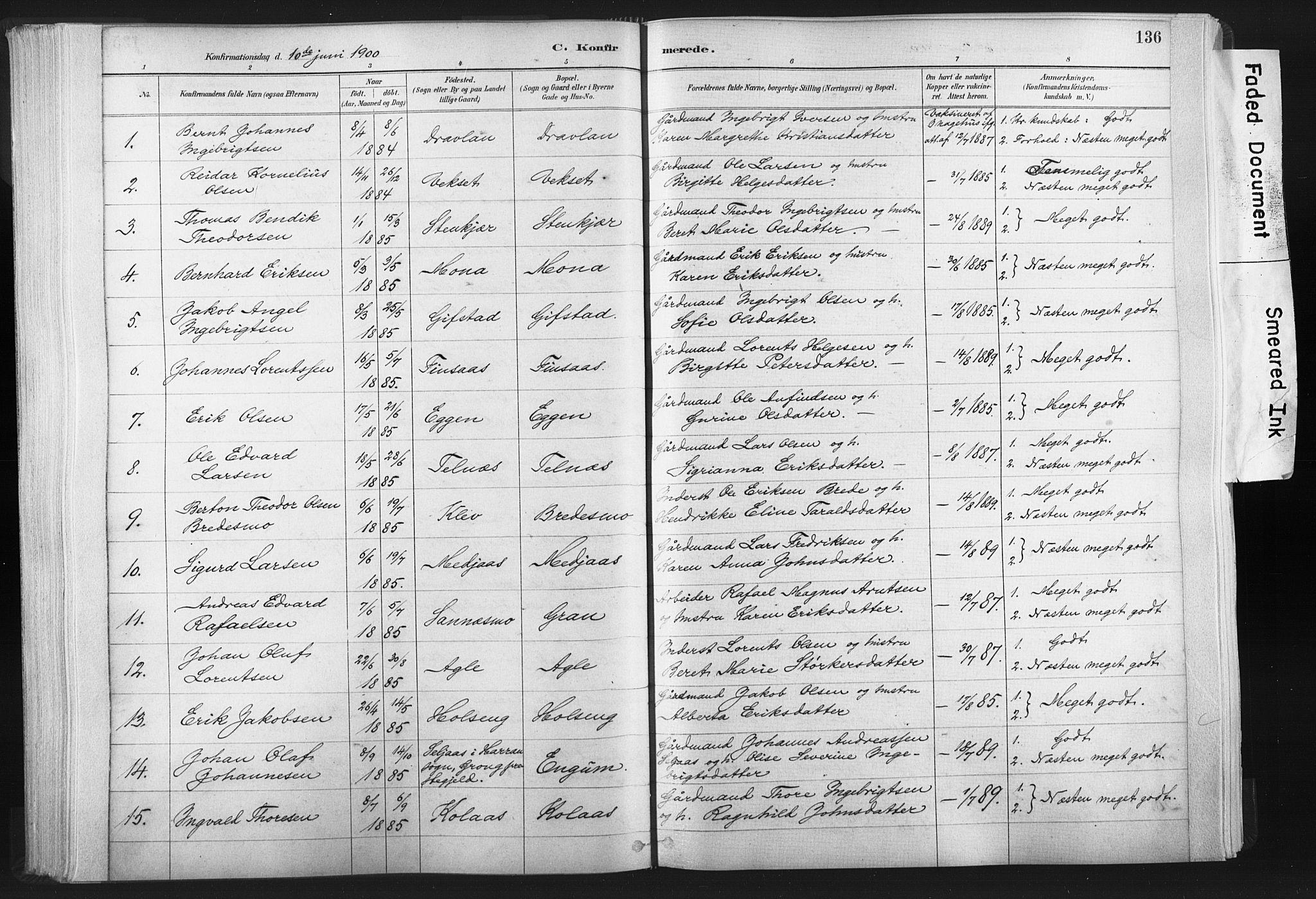 SAT, Ministerialprotokoller, klokkerbøker og fødselsregistre - Nord-Trøndelag, 749/L0474: Ministerialbok nr. 749A08, 1887-1903, s. 136