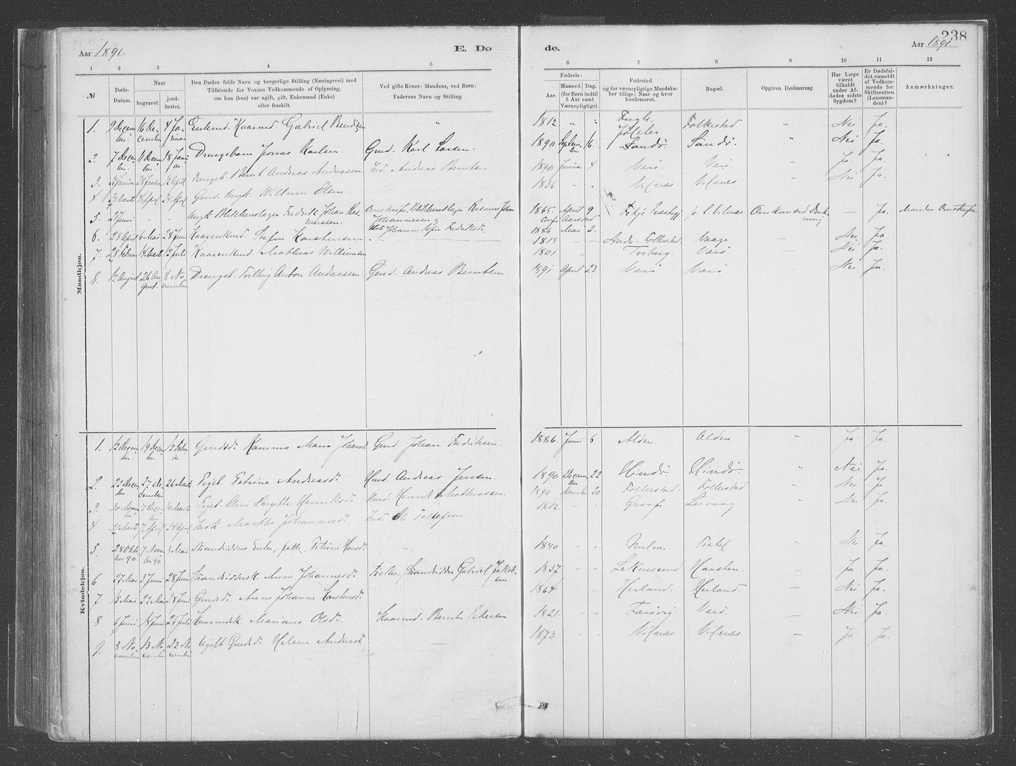 SAB, Askvoll Sokneprestembete, Ministerialbok nr. C  1, 1879-1922, s. 238