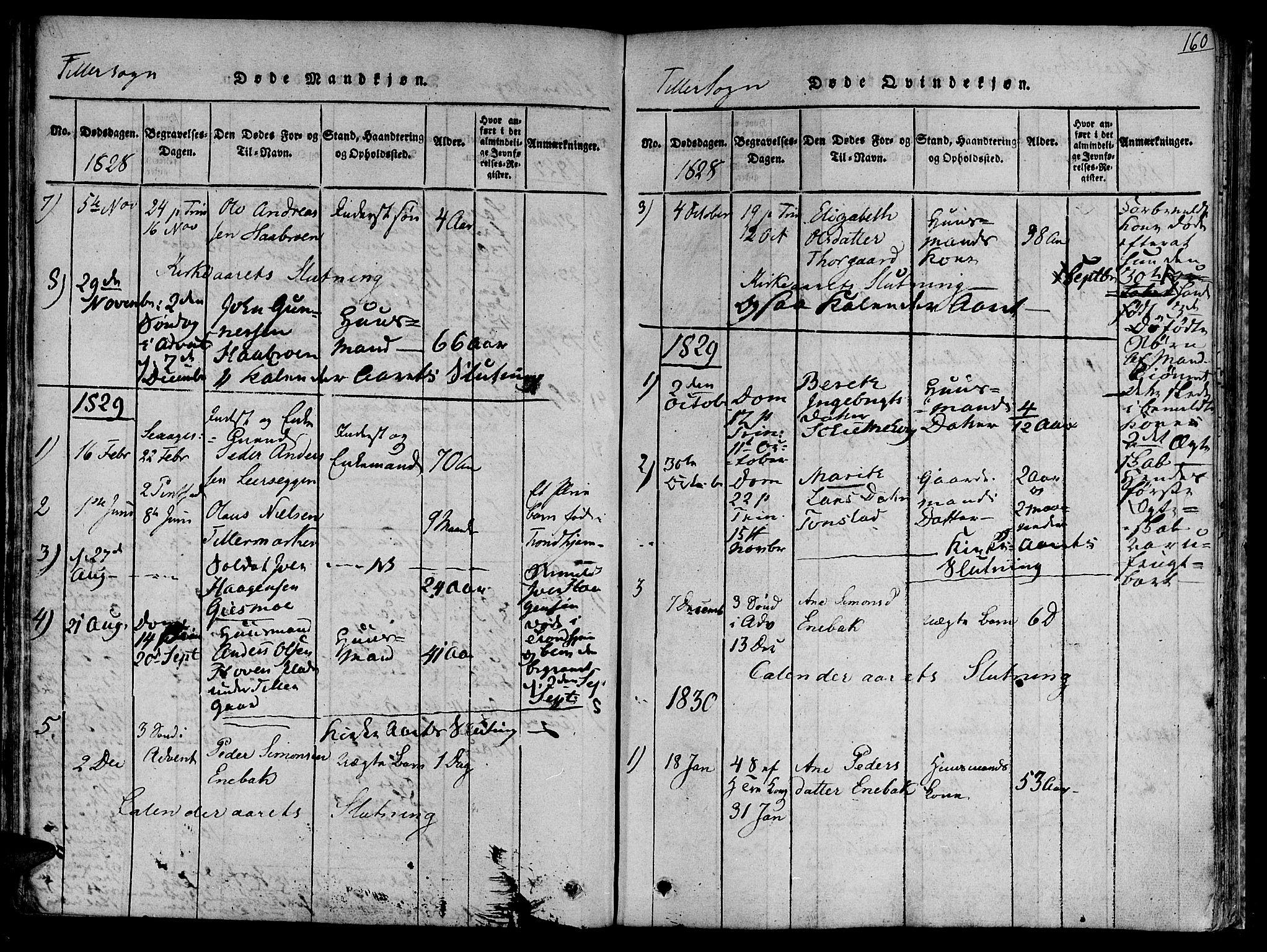 SAT, Ministerialprotokoller, klokkerbøker og fødselsregistre - Sør-Trøndelag, 618/L0440: Ministerialbok nr. 618A04 /2, 1816-1843, s. 160