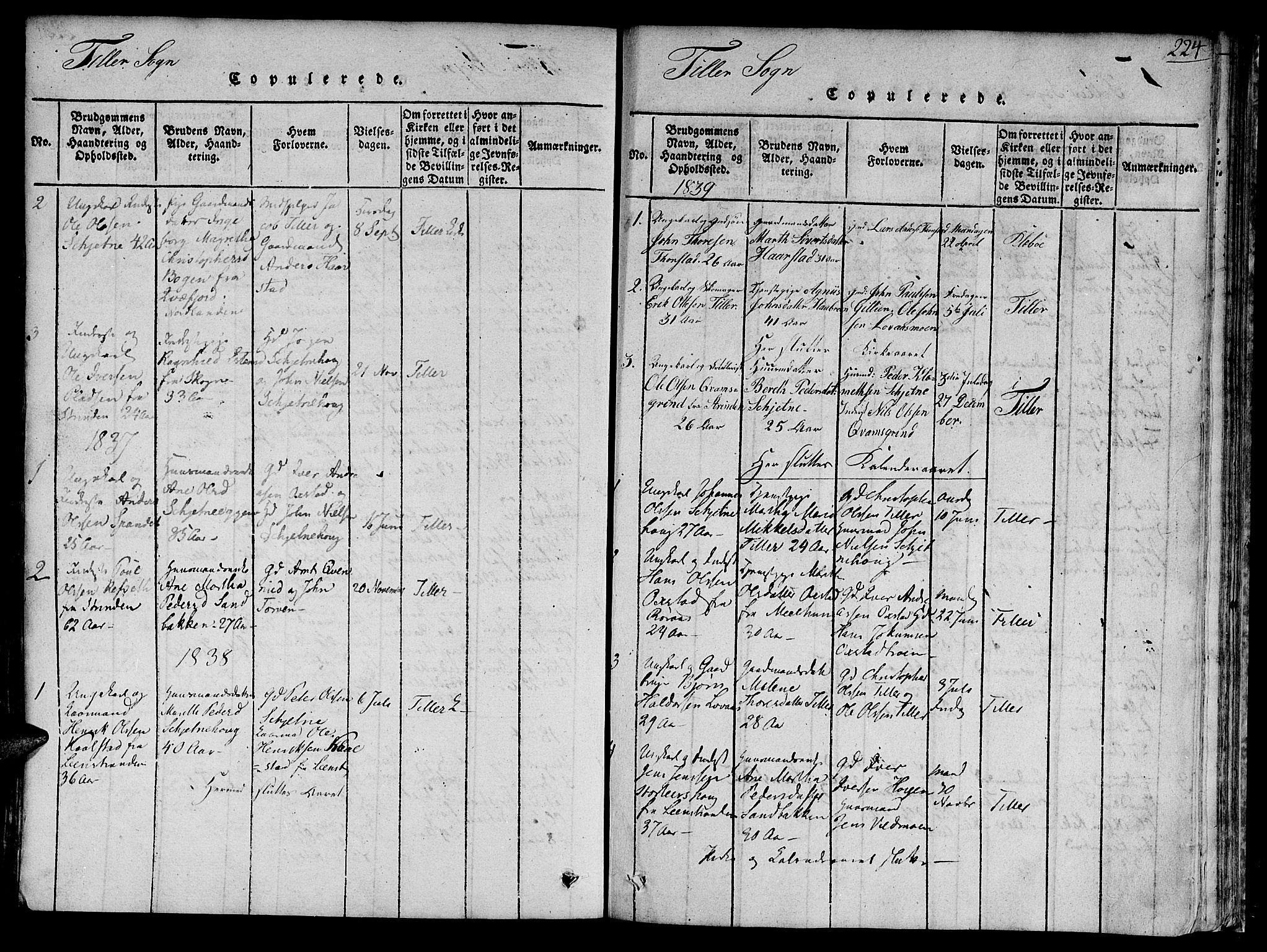 SAT, Ministerialprotokoller, klokkerbøker og fødselsregistre - Sør-Trøndelag, 618/L0440: Ministerialbok nr. 618A04 /2, 1816-1843, s. 224