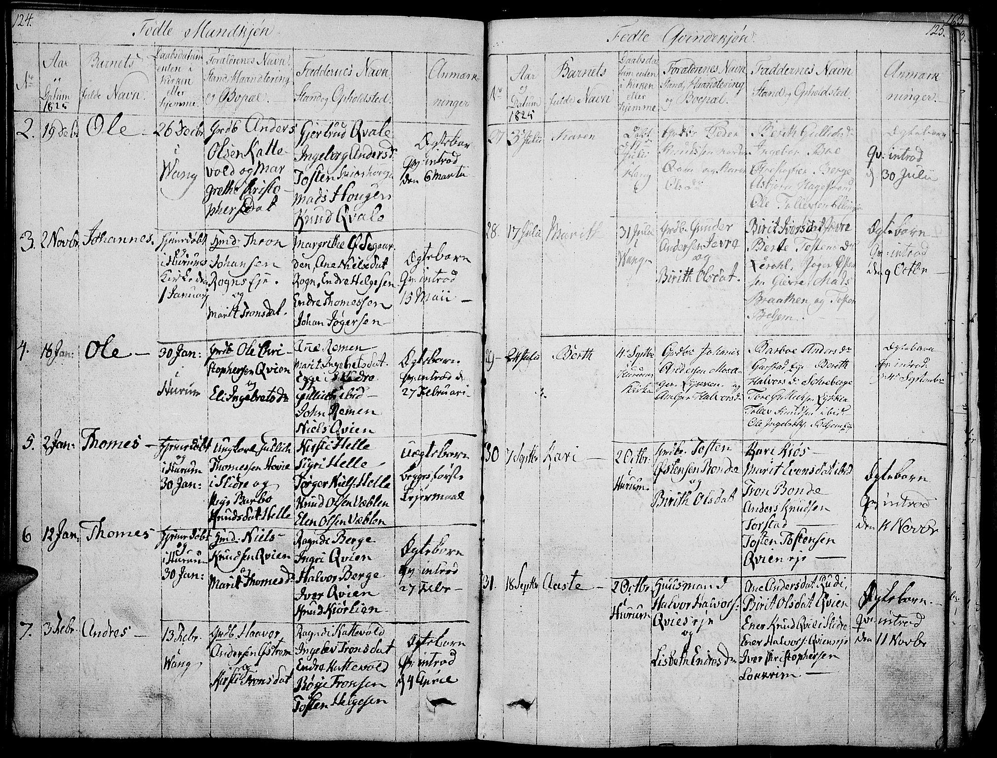 SAH, Vang prestekontor, Valdres, Ministerialbok nr. 3, 1809-1831, s. 124-125