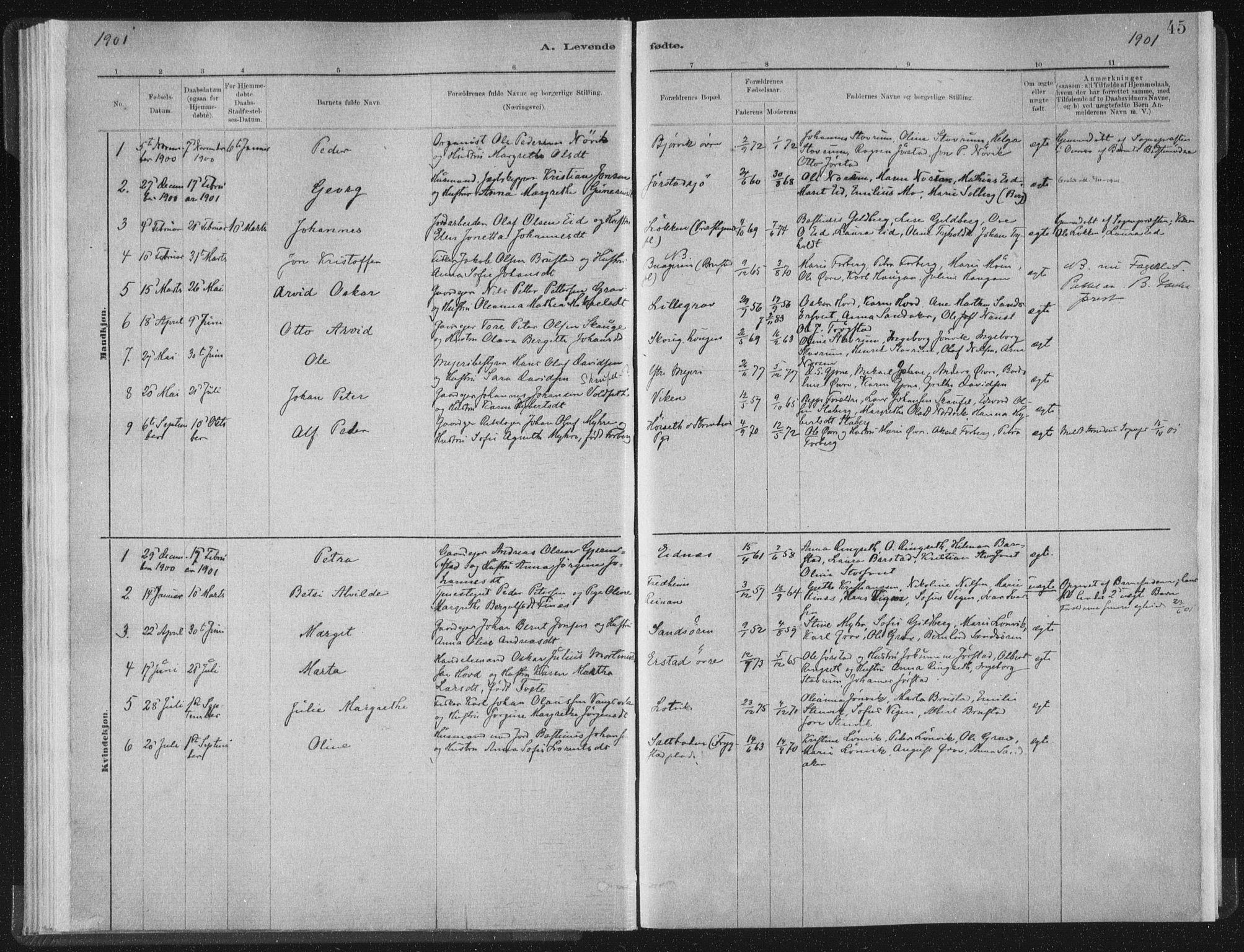 SAT, Ministerialprotokoller, klokkerbøker og fødselsregistre - Nord-Trøndelag, 722/L0220: Ministerialbok nr. 722A07, 1881-1908, s. 45