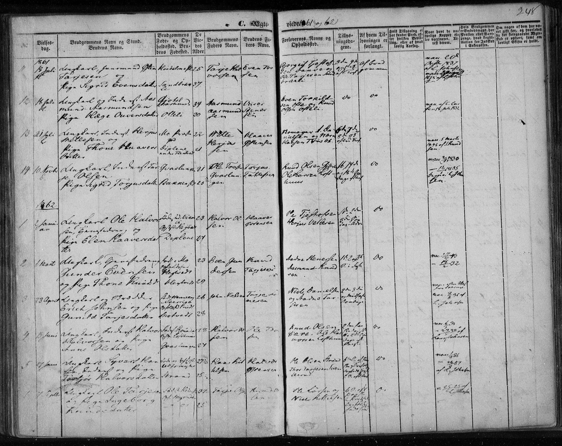 SAKO, Lårdal kirkebøker, F/Fa/L0006: Ministerialbok nr. I 6, 1861-1886, s. 248