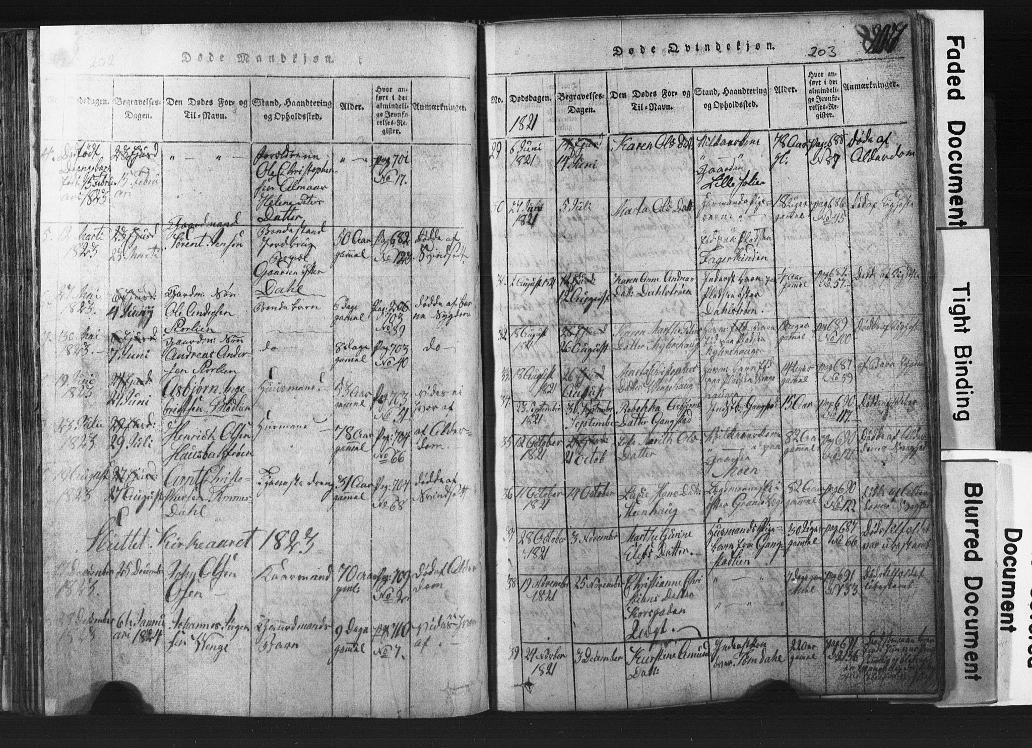 SAT, Ministerialprotokoller, klokkerbøker og fødselsregistre - Nord-Trøndelag, 701/L0017: Klokkerbok nr. 701C01, 1817-1825, s. 202-203