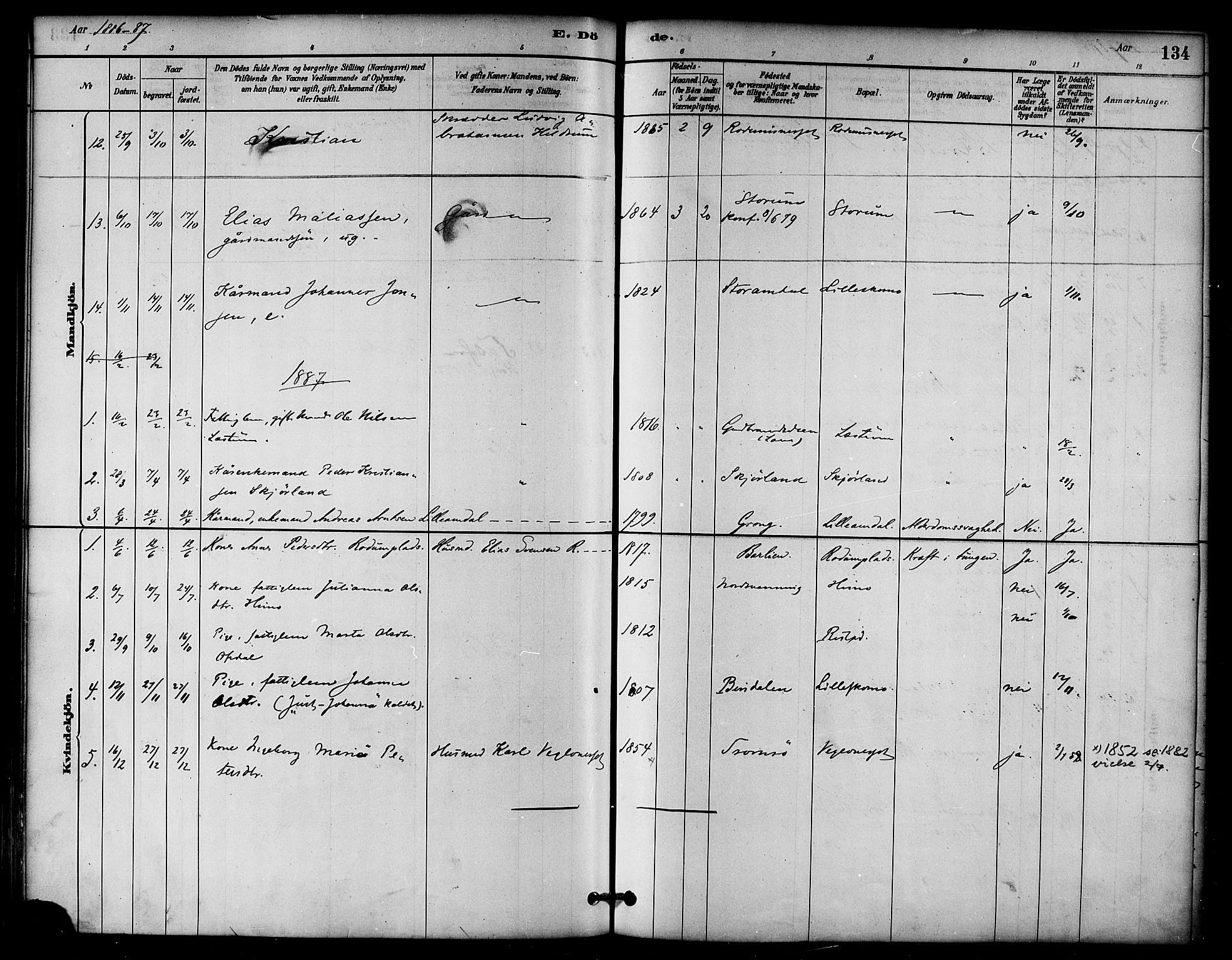 SAT, Ministerialprotokoller, klokkerbøker og fødselsregistre - Nord-Trøndelag, 764/L0555: Ministerialbok nr. 764A10, 1881-1896, s. 134