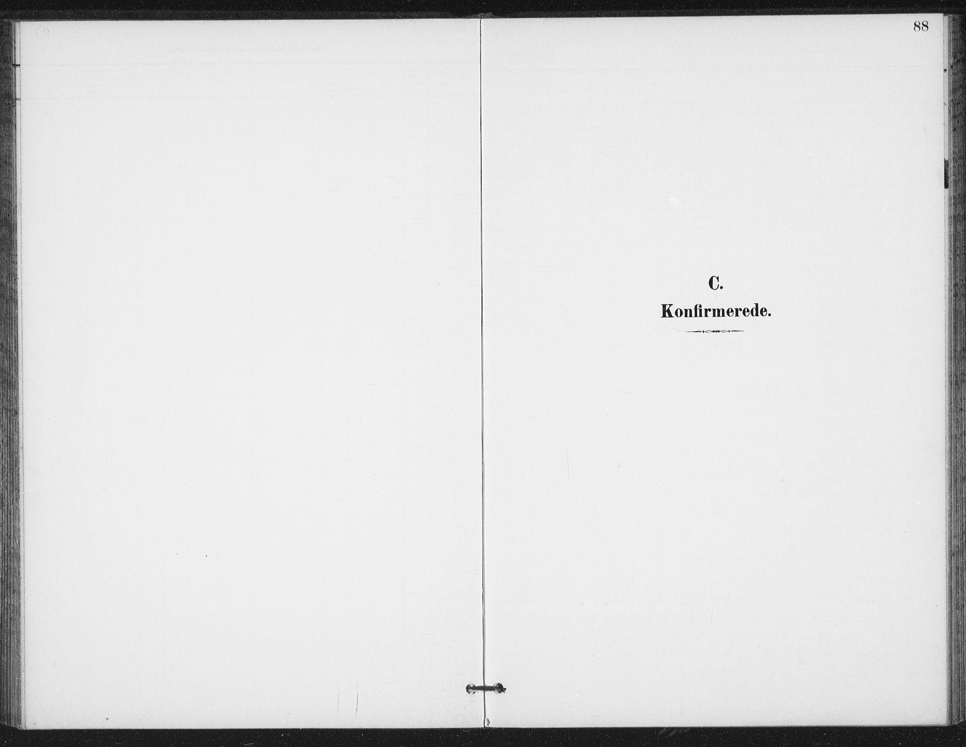 SAT, Ministerialprotokoller, klokkerbøker og fødselsregistre - Nord-Trøndelag, 714/L0131: Ministerialbok nr. 714A02, 1896-1918, s. 88