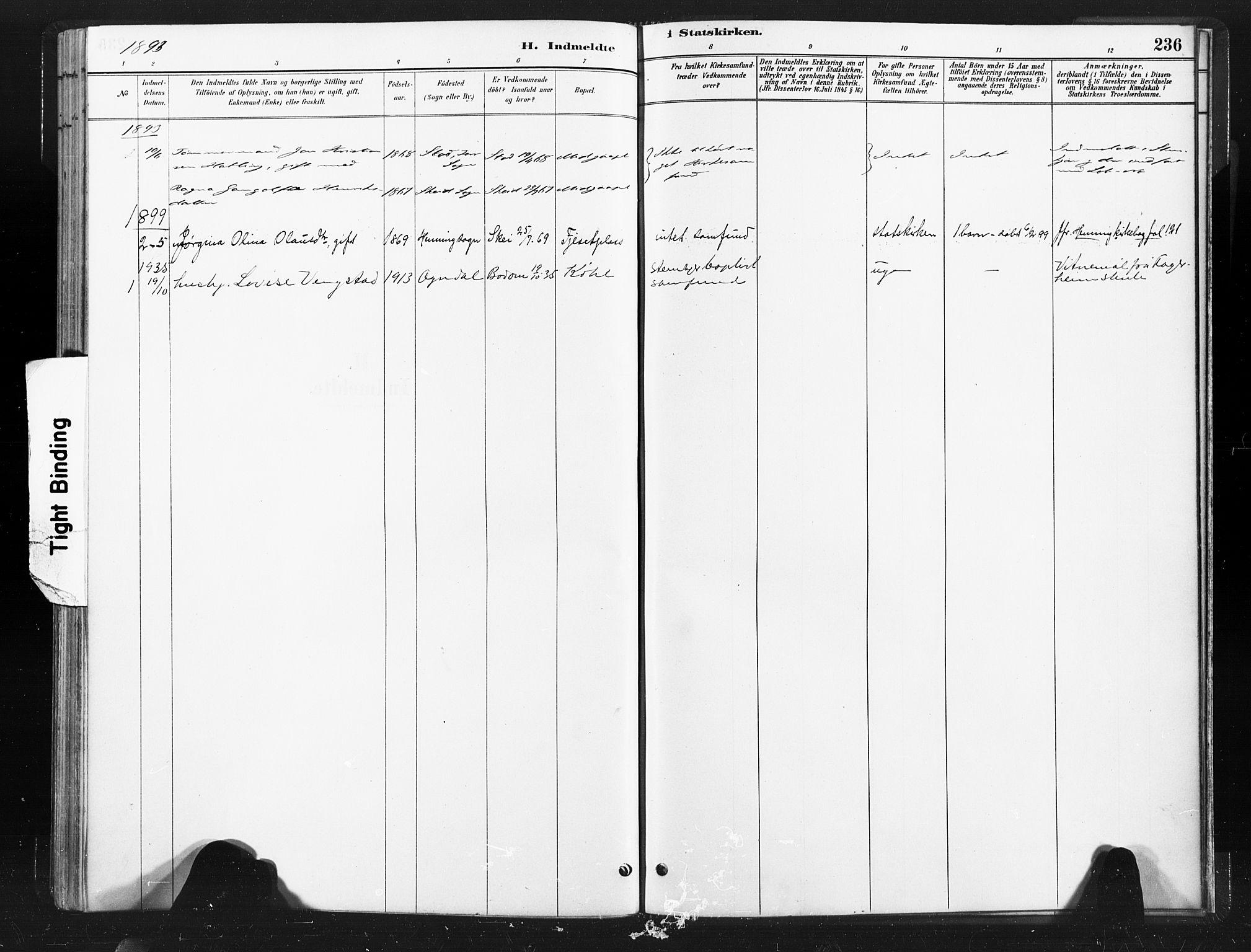 SAT, Ministerialprotokoller, klokkerbøker og fødselsregistre - Nord-Trøndelag, 736/L0361: Ministerialbok nr. 736A01, 1884-1906, s. 236