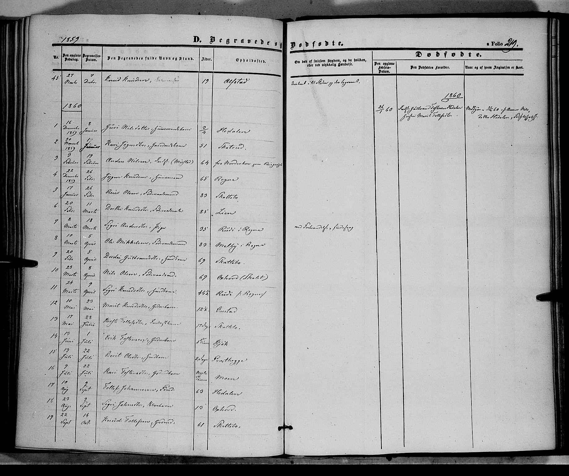 SAH, Øystre Slidre prestekontor, Ministerialbok nr. 1, 1849-1874, s. 219