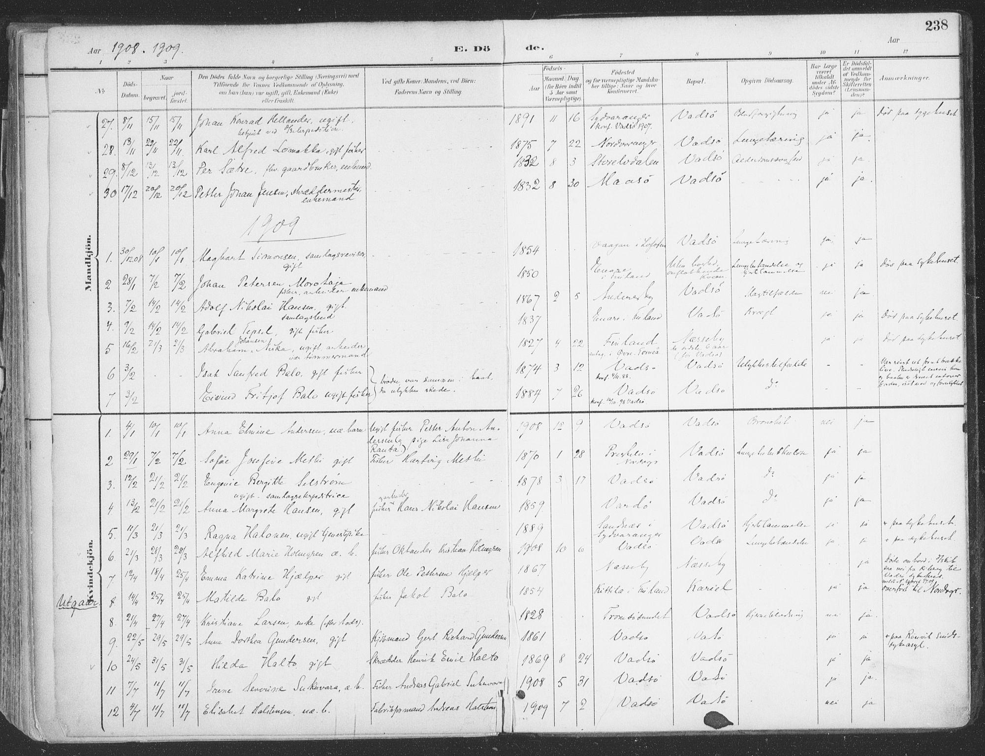 SATØ, Vadsø sokneprestkontor, H/Ha/L0007kirke: Ministerialbok nr. 7, 1896-1916, s. 238