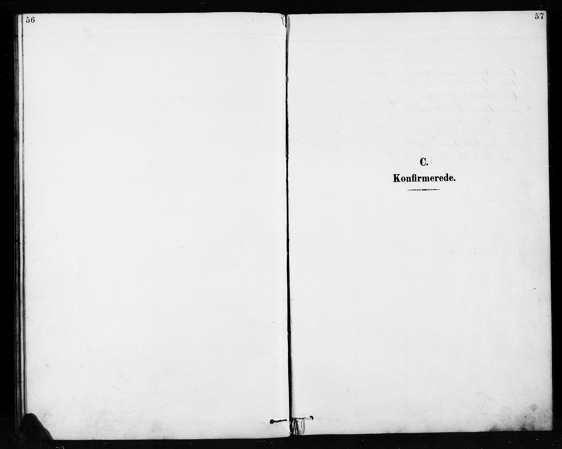 SAH, Etnedal prestekontor, H/Ha/Hab/Habb/L0001: Klokkerbok nr. II 1, 1894-1911, s. 56-57