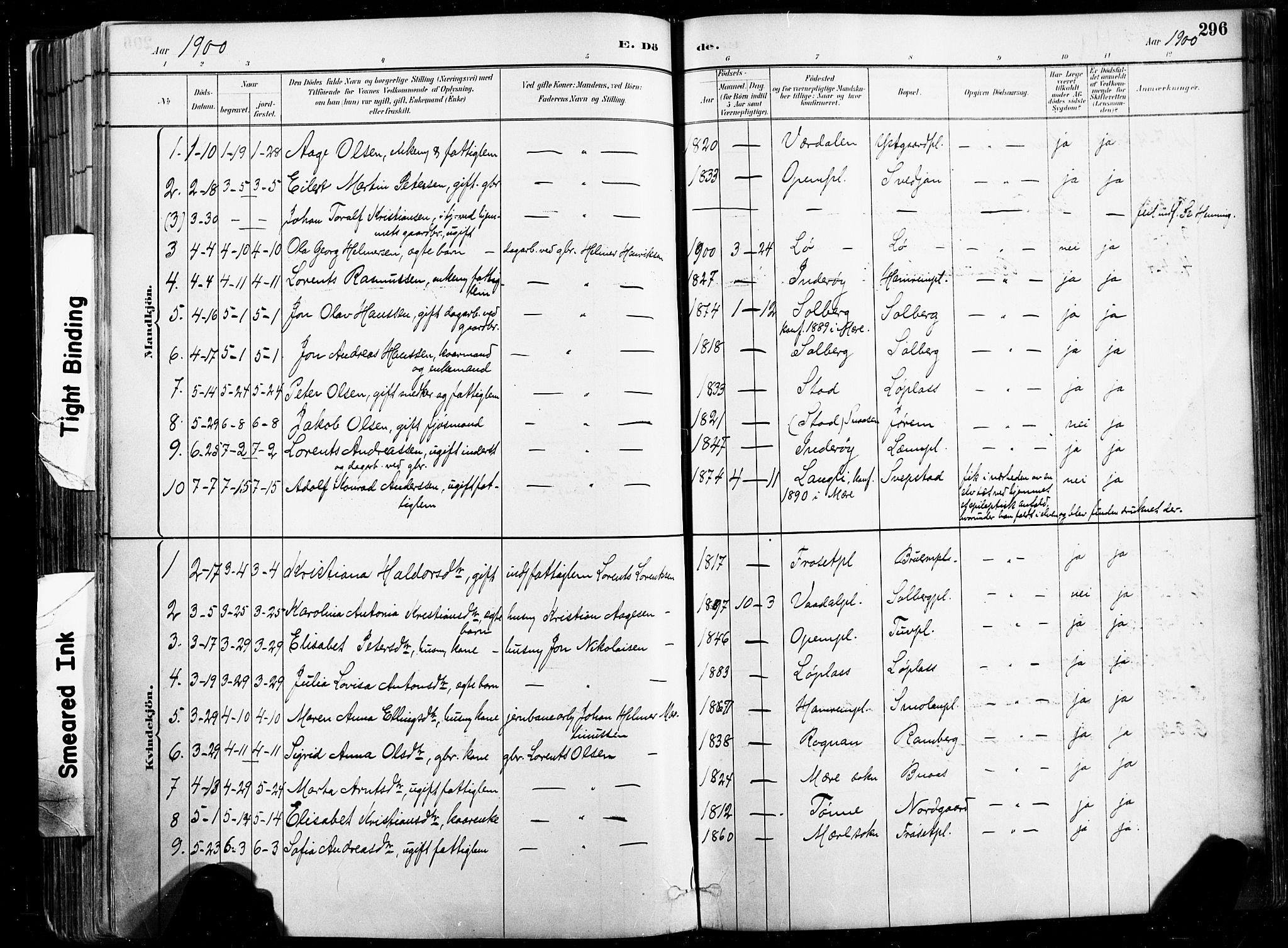 SAT, Ministerialprotokoller, klokkerbøker og fødselsregistre - Nord-Trøndelag, 735/L0351: Ministerialbok nr. 735A10, 1884-1908, s. 296