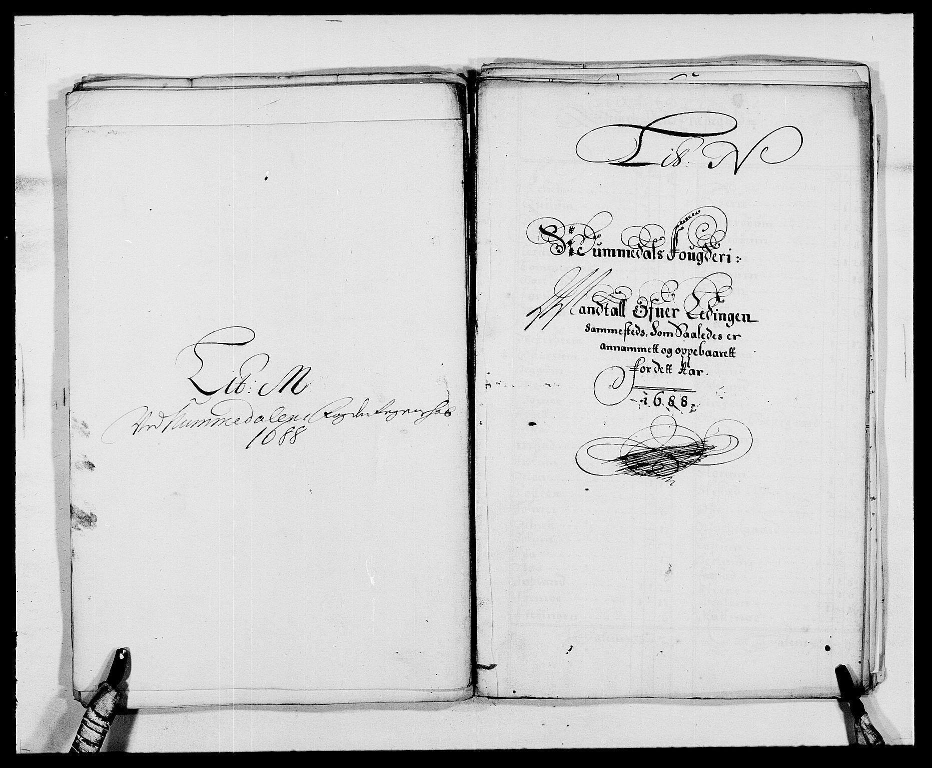 RA, Rentekammeret inntil 1814, Reviderte regnskaper, Fogderegnskap, R64/L4422: Fogderegnskap Namdal, 1687-1689, s. 158