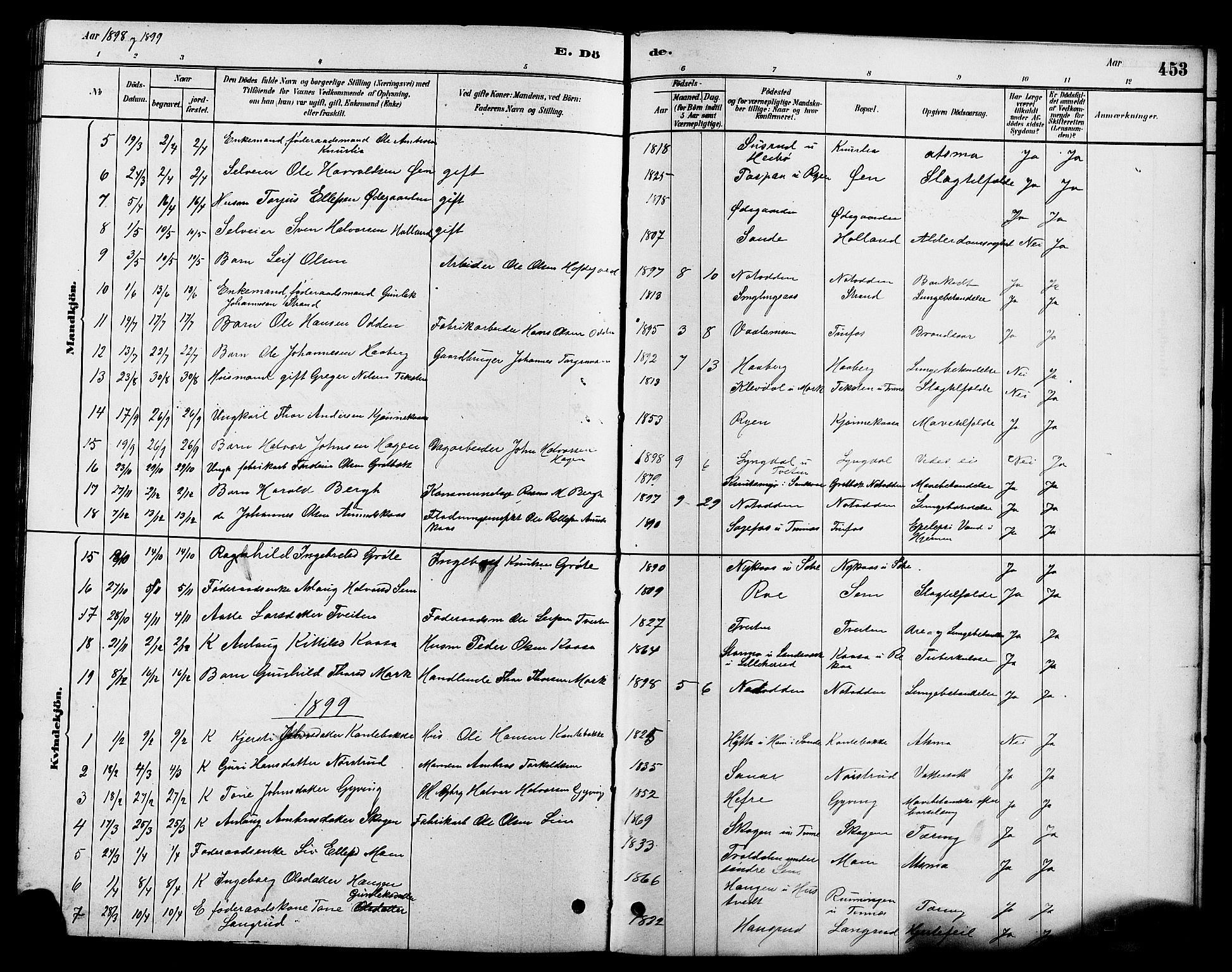 SAKO, Heddal kirkebøker, G/Ga/L0002: Klokkerbok nr. I 2, 1879-1908, s. 453