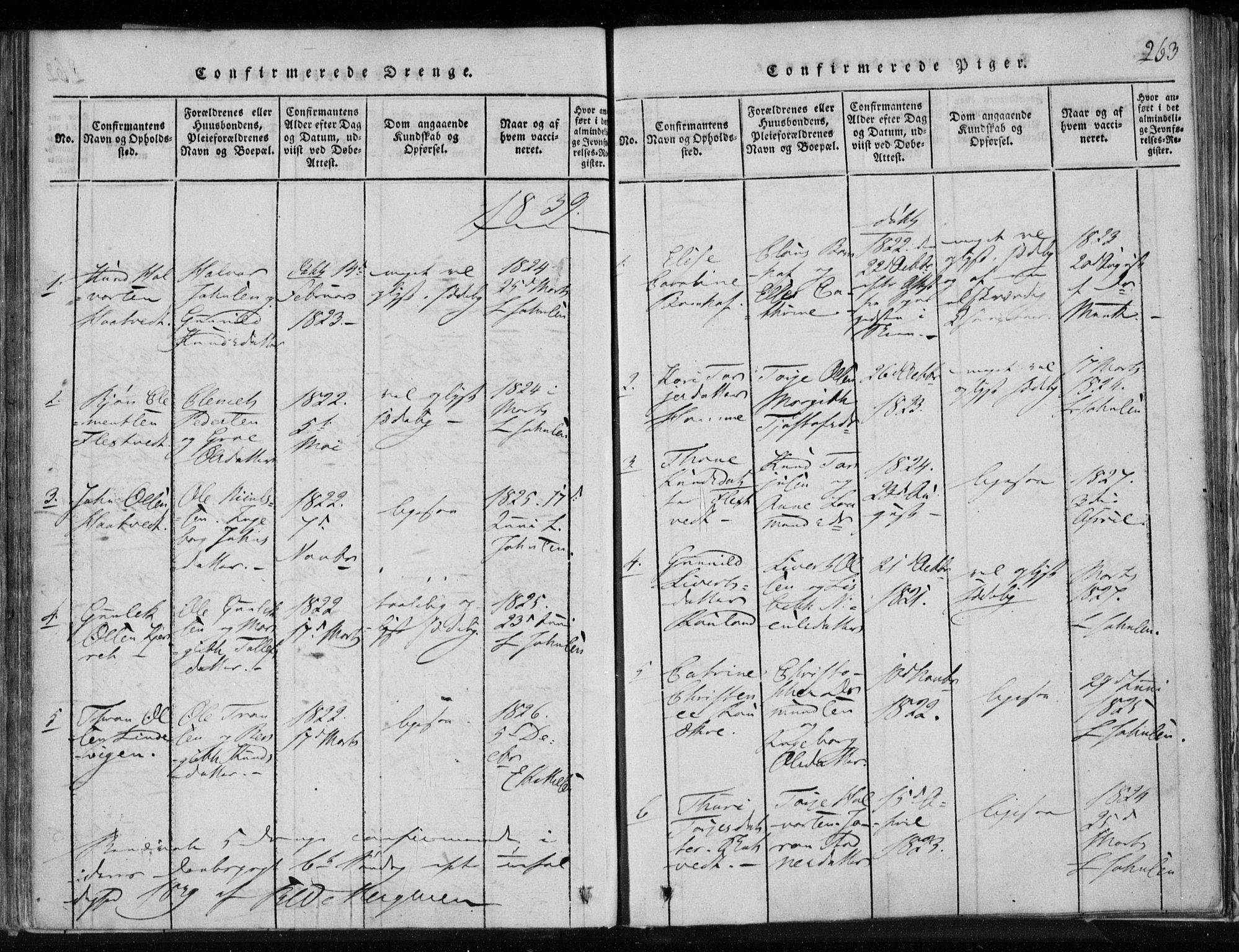 SAKO, Lårdal kirkebøker, F/Fa/L0005: Ministerialbok nr. I 5, 1815-1860, s. 263