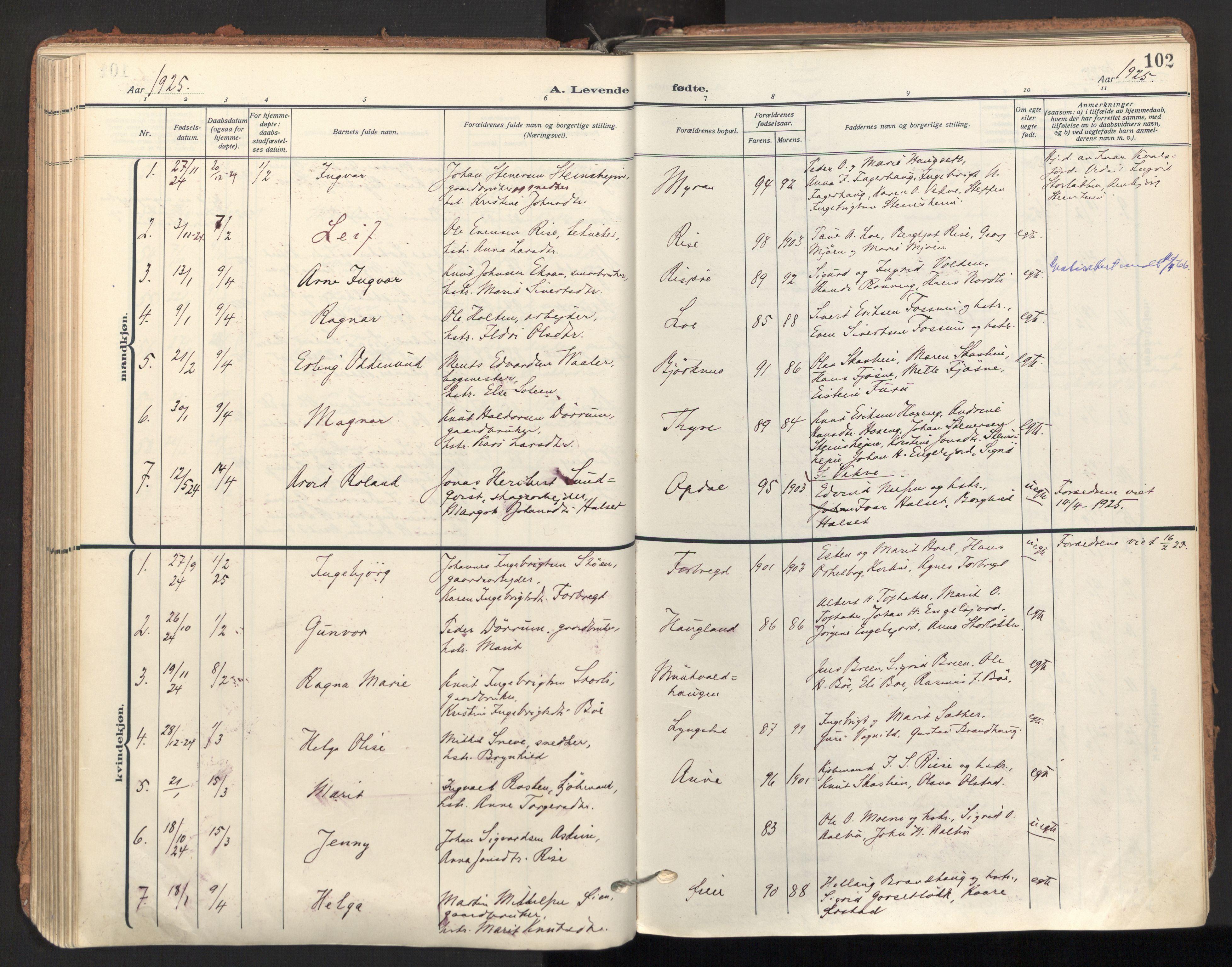 SAT, Ministerialprotokoller, klokkerbøker og fødselsregistre - Sør-Trøndelag, 678/L0909: Ministerialbok nr. 678A17, 1912-1930, s. 102