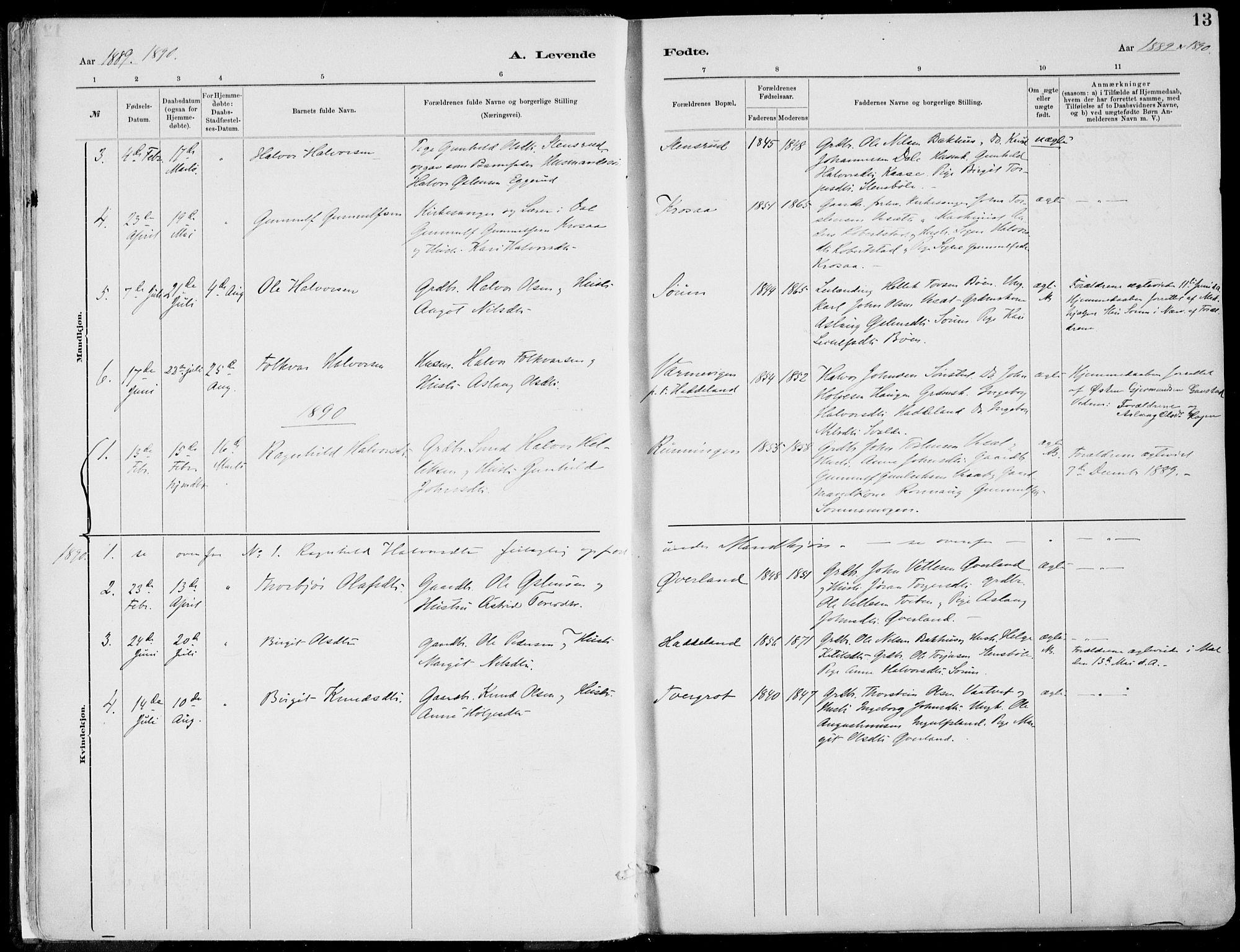 SAKO, Rjukan kirkebøker, F/Fa/L0001: Ministerialbok nr. 1, 1878-1912, s. 13