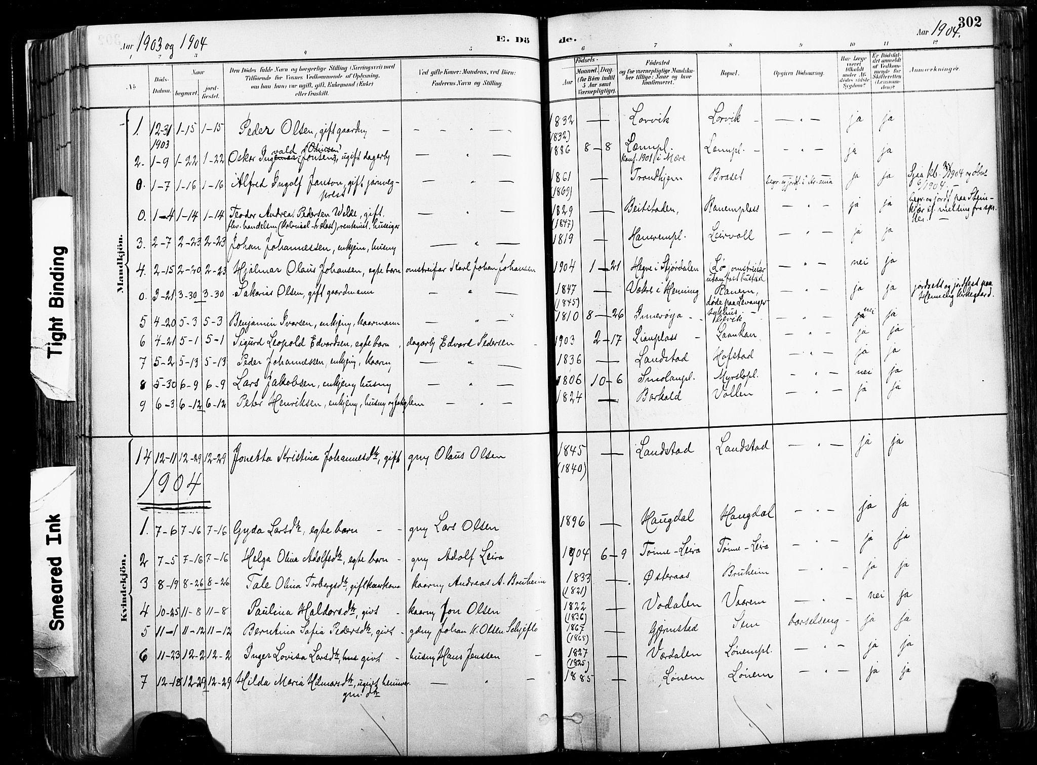 SAT, Ministerialprotokoller, klokkerbøker og fødselsregistre - Nord-Trøndelag, 735/L0351: Ministerialbok nr. 735A10, 1884-1908, s. 302