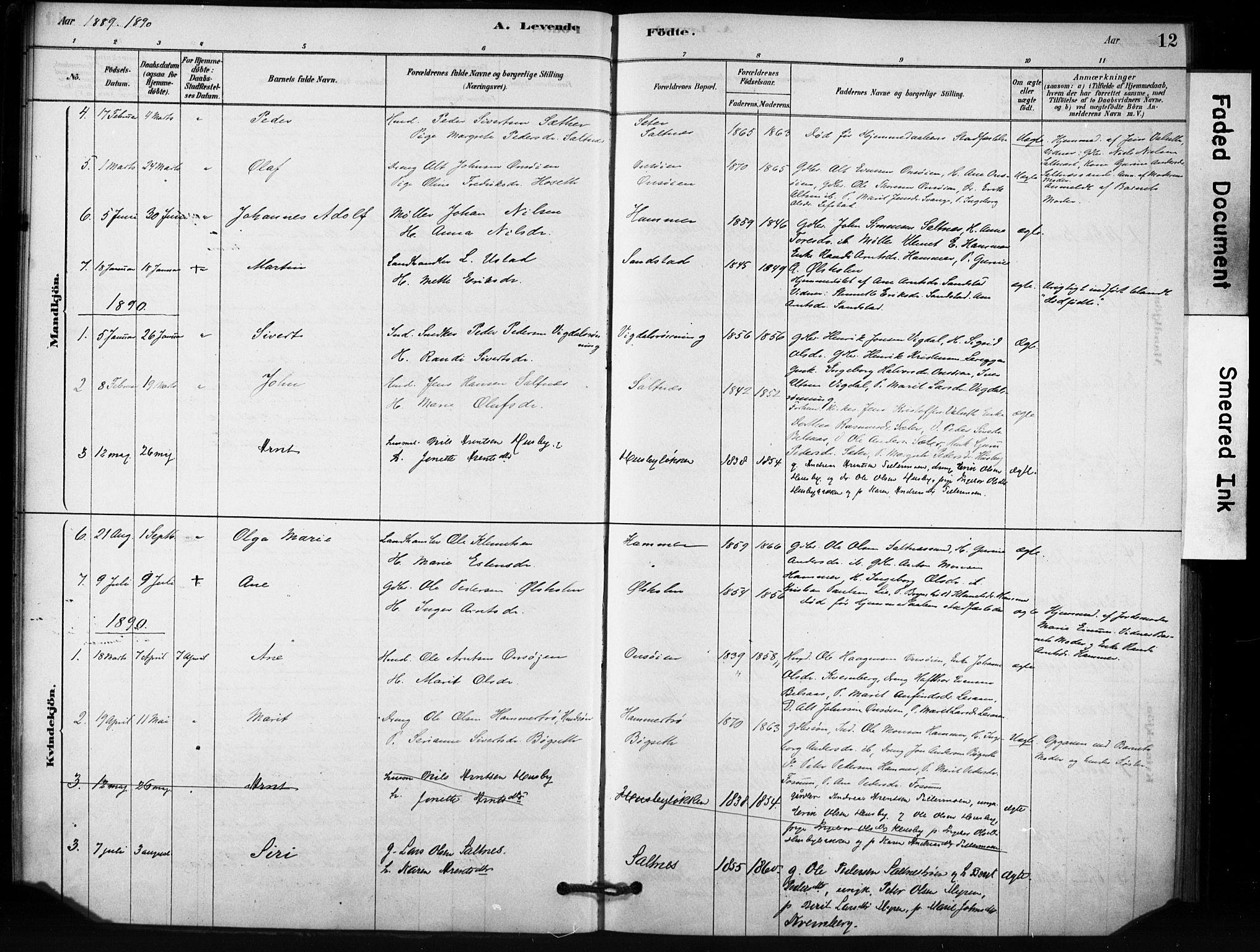 SAT, Ministerialprotokoller, klokkerbøker og fødselsregistre - Sør-Trøndelag, 666/L0786: Ministerialbok nr. 666A04, 1878-1895, s. 12
