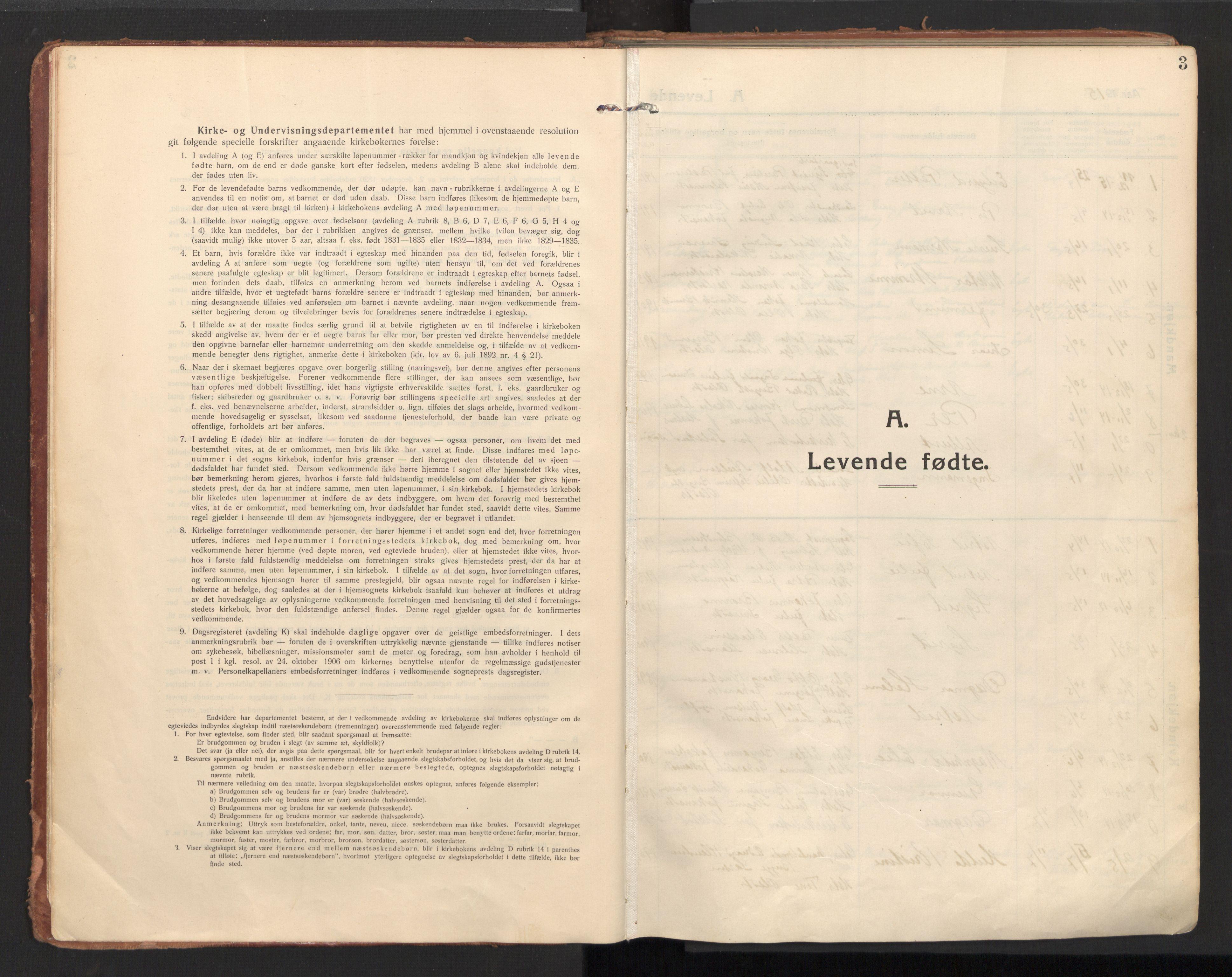 SAT, Ministerialprotokoller, klokkerbøker og fødselsregistre - Nordland, 810/L0156: Ministerialbok nr. 810A15, 1915-1930, s. 3