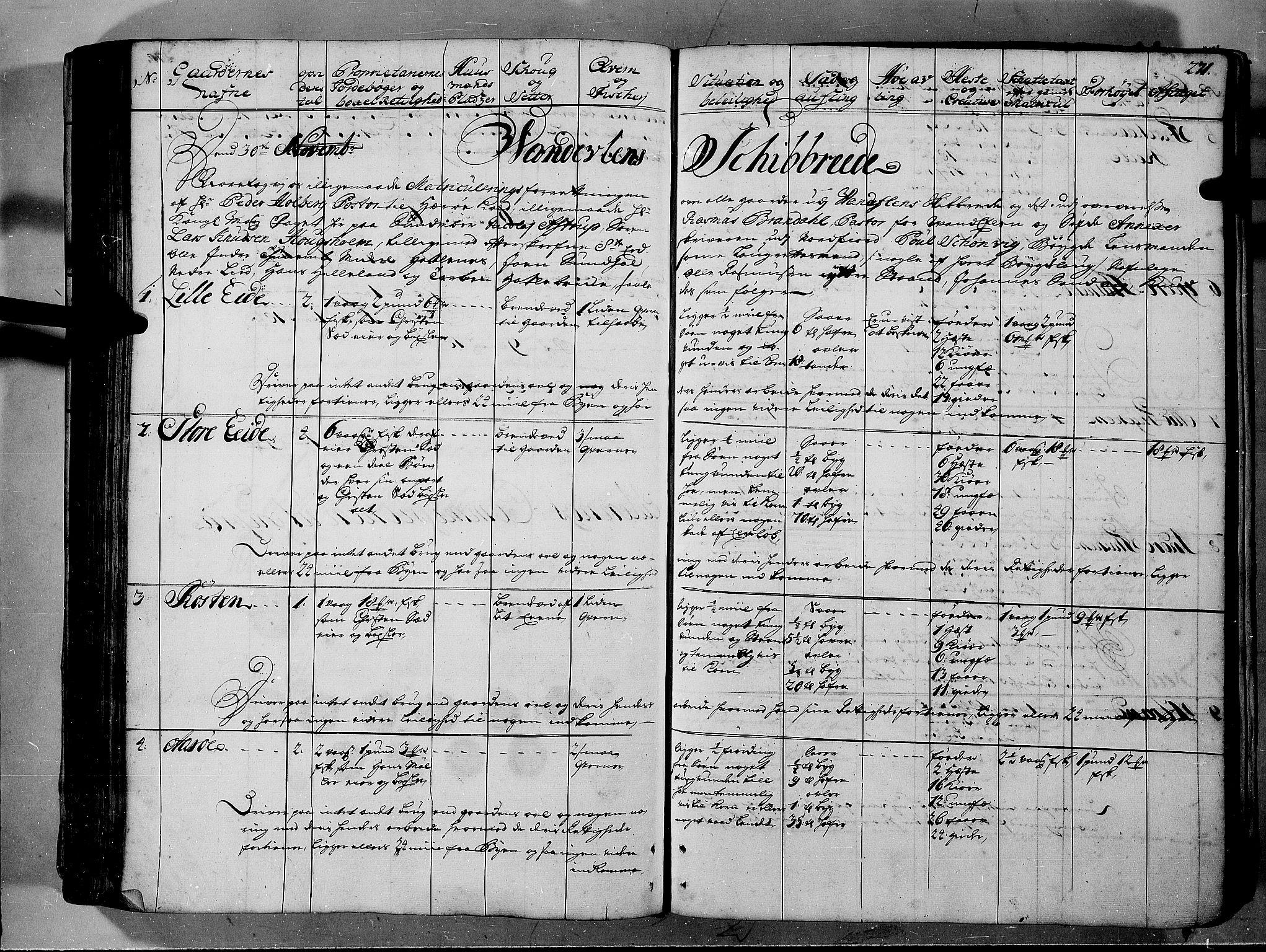 RA, Rentekammeret inntil 1814, Realistisk ordnet avdeling, N/Nb/Nbf/L0150: Sunnmøre eksaminasjonsprotokoll, 1724, s. 270b-271a