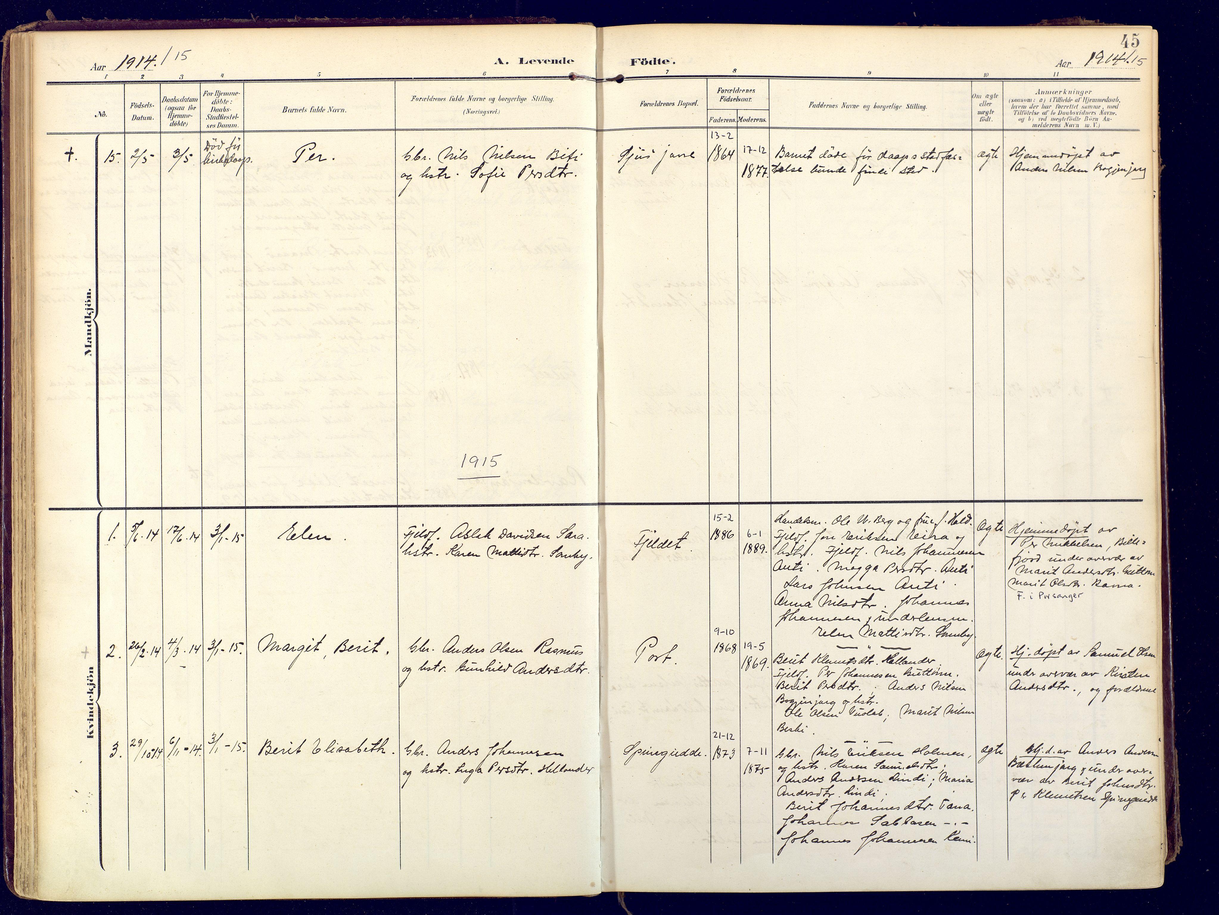 SATØ, Karasjok sokneprestkontor, H/Ha: Ministerialbok nr. 3, 1907-1926, s. 45