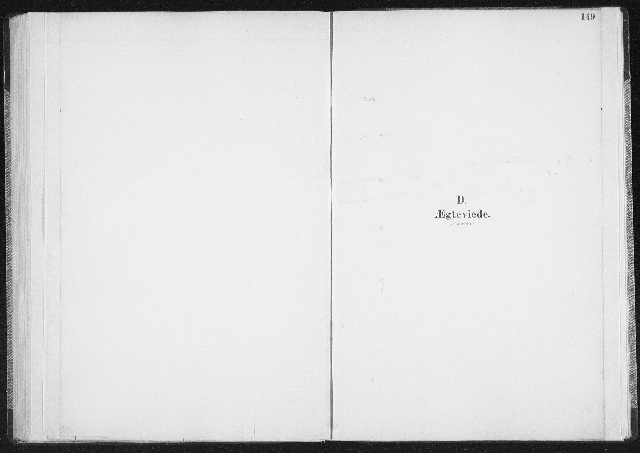 SAT, Ministerialprotokoller, klokkerbøker og fødselsregistre - Nordland, 898/L1422: Ministerialbok nr. 898A02, 1887-1908, s. 149