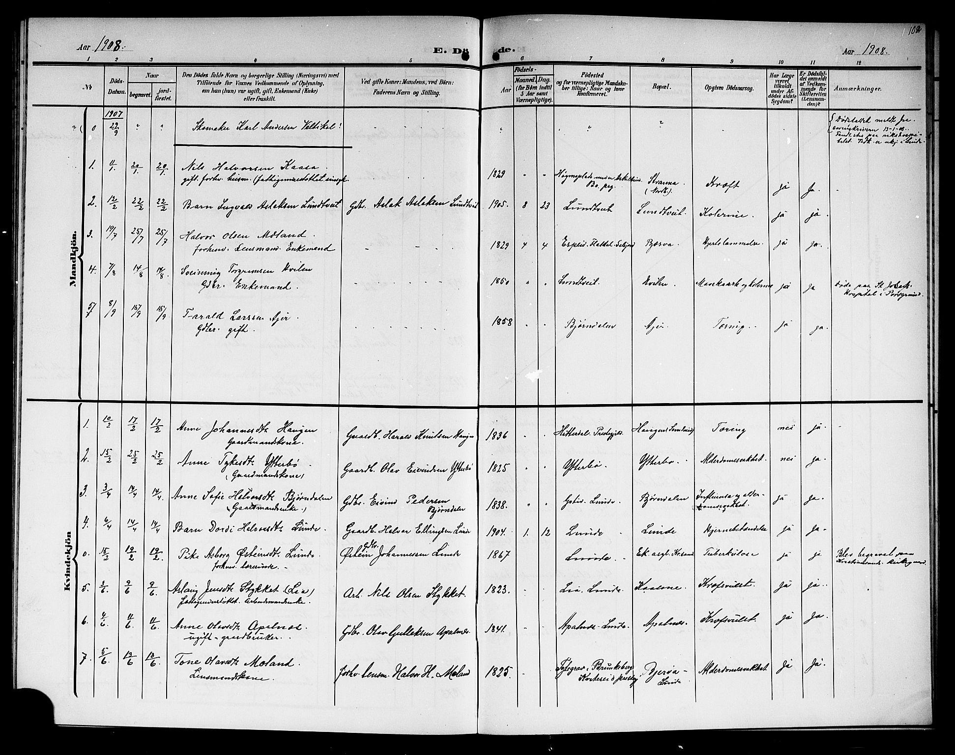 SAKO, Lunde kirkebøker, G/Ga/L0004: Klokkerbok nr. I 4, 1906-1914, s. 102