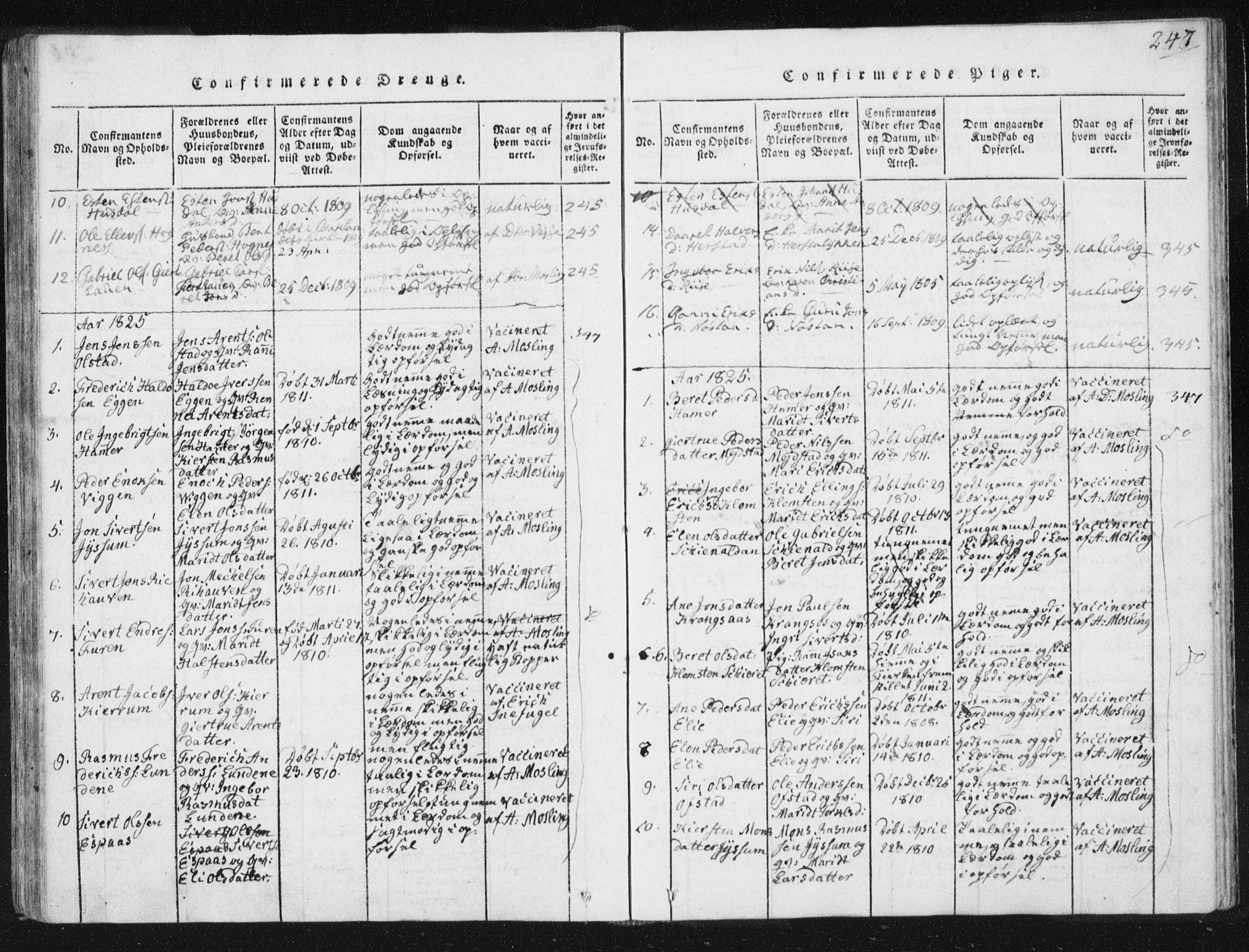 SAT, Ministerialprotokoller, klokkerbøker og fødselsregistre - Sør-Trøndelag, 665/L0770: Ministerialbok nr. 665A05, 1817-1829, s. 247