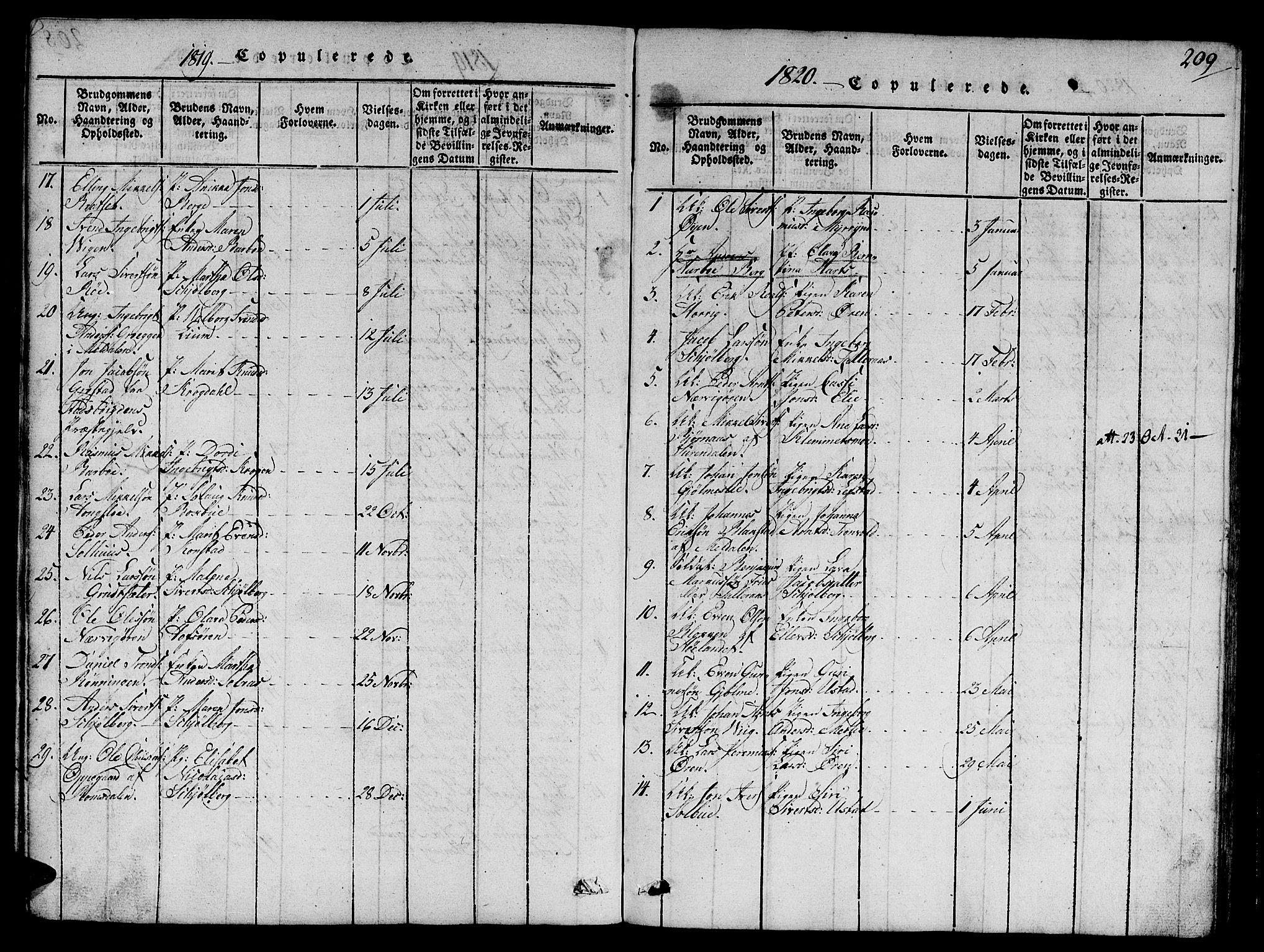SAT, Ministerialprotokoller, klokkerbøker og fødselsregistre - Sør-Trøndelag, 668/L0803: Ministerialbok nr. 668A03, 1800-1826, s. 209