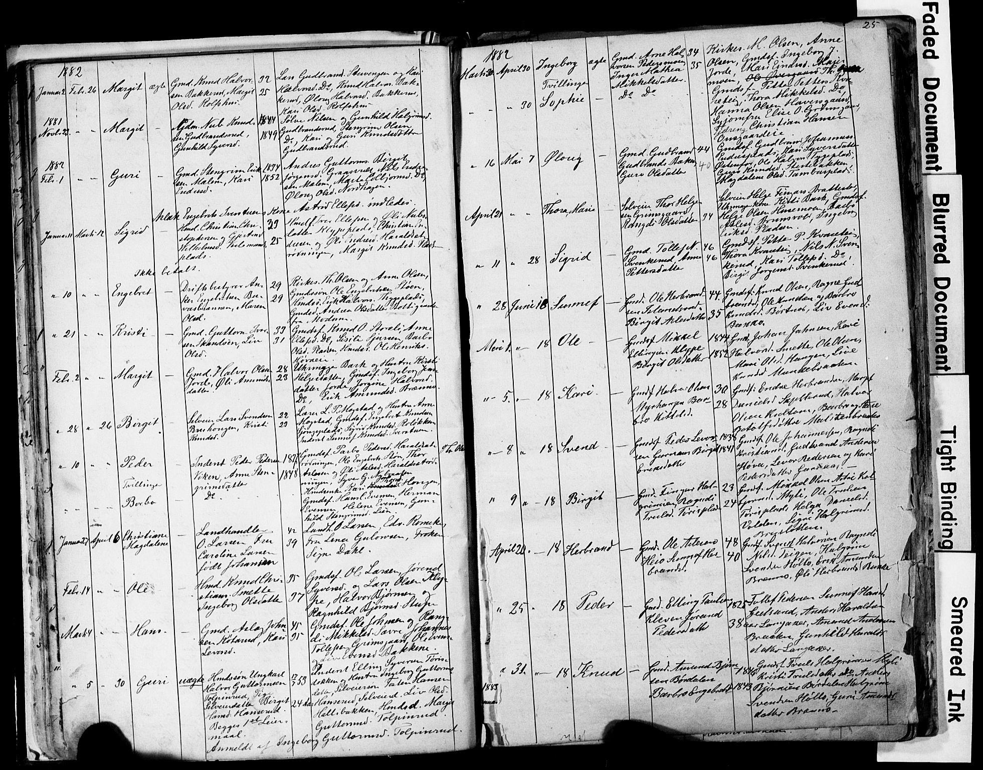 SAKO, Nes kirkebøker, G/Ga/L0002: Klokkerbok nr. I 2, 1872-1912, s. 25