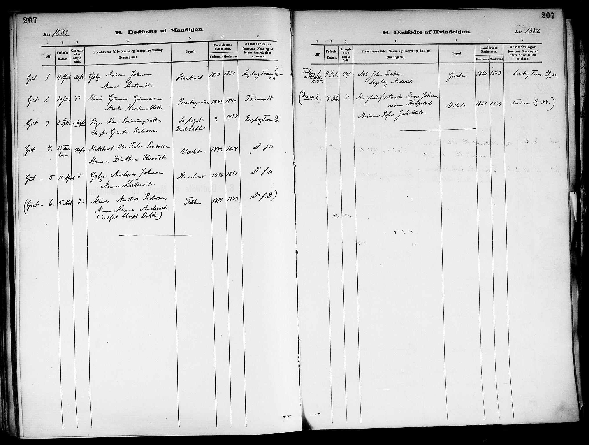 SAKO, Holla kirkebøker, F/Fa/L0008: Ministerialbok nr. 8, 1882-1897, s. 207