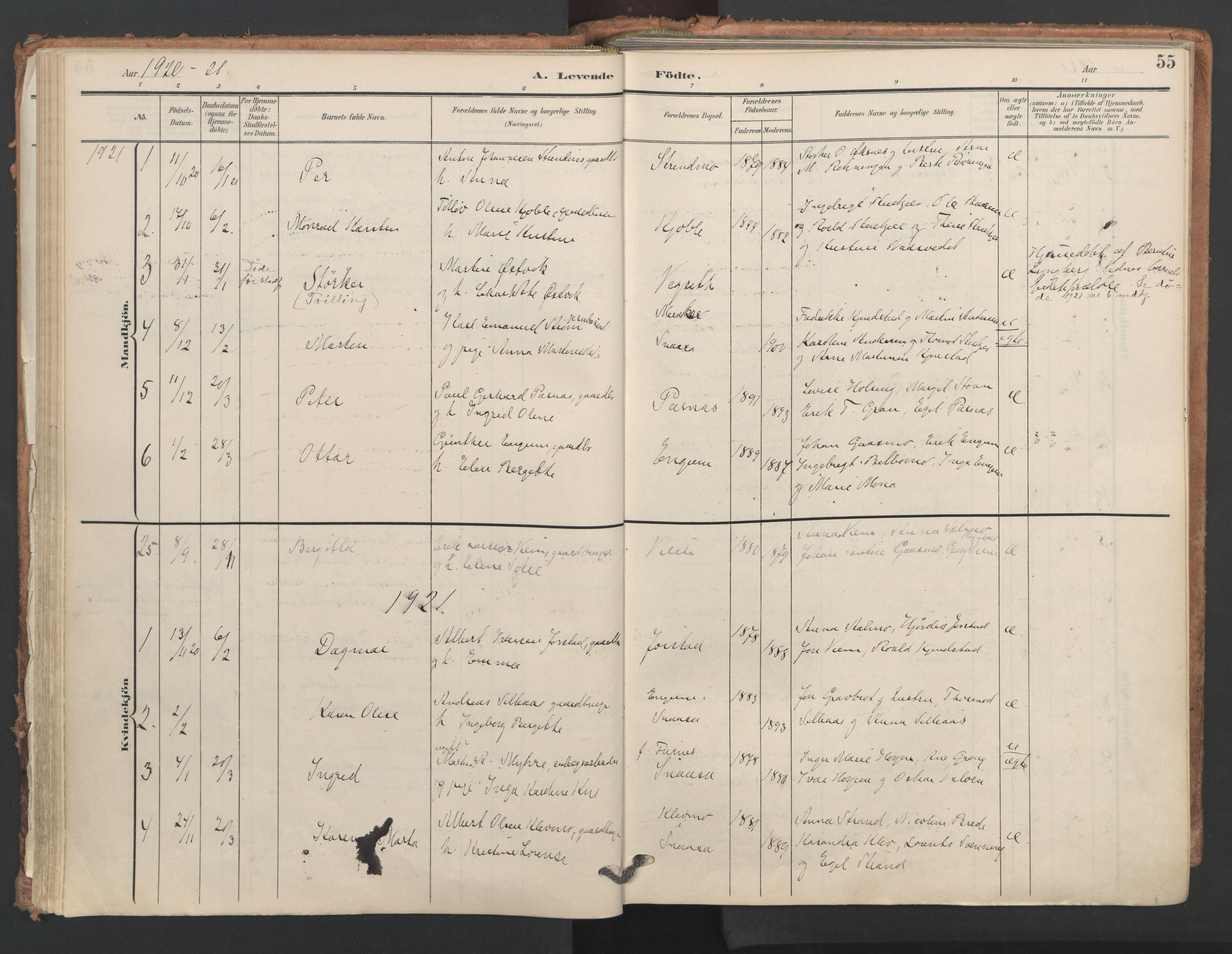 SAT, Ministerialprotokoller, klokkerbøker og fødselsregistre - Nord-Trøndelag, 749/L0477: Ministerialbok nr. 749A11, 1902-1927, s. 55